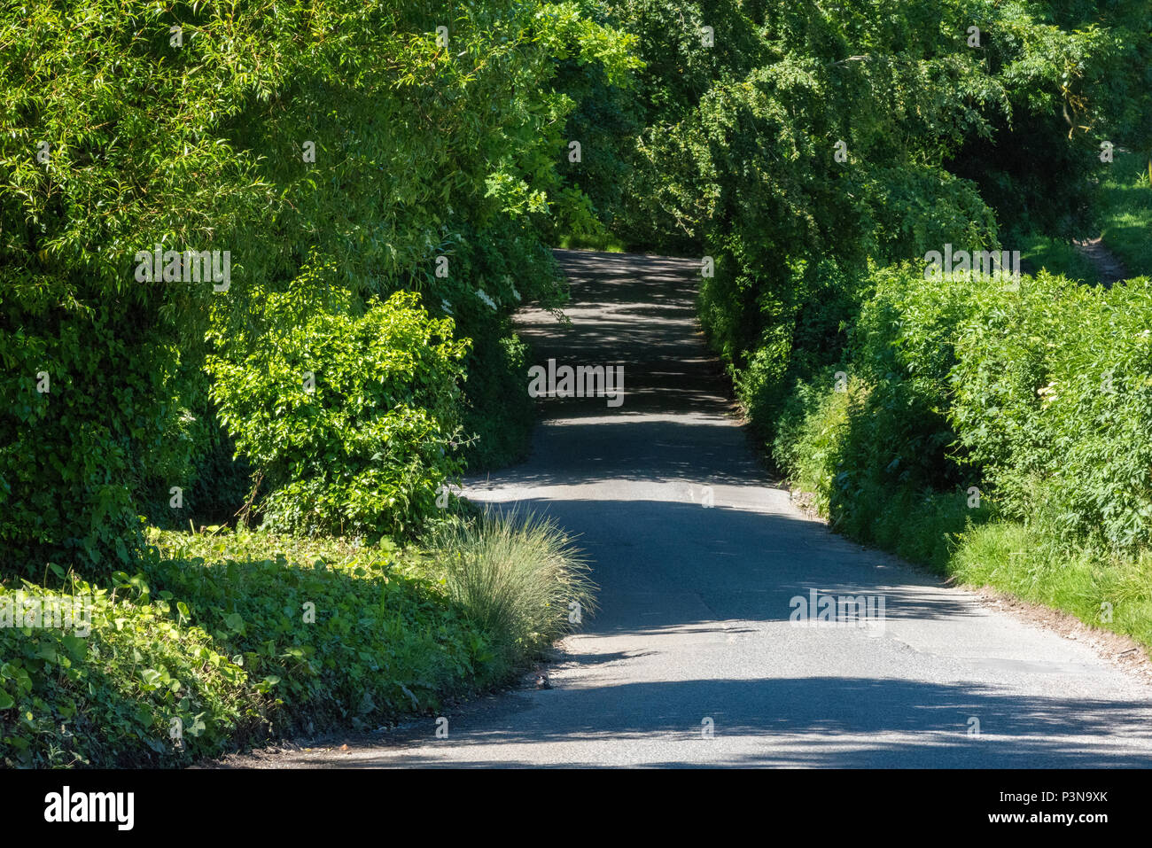 a beautiful shaded and sunny country lane in the summer weather and sunshine with shadows being cast across the tarmac and rays of sunshine from trees - Stock Image