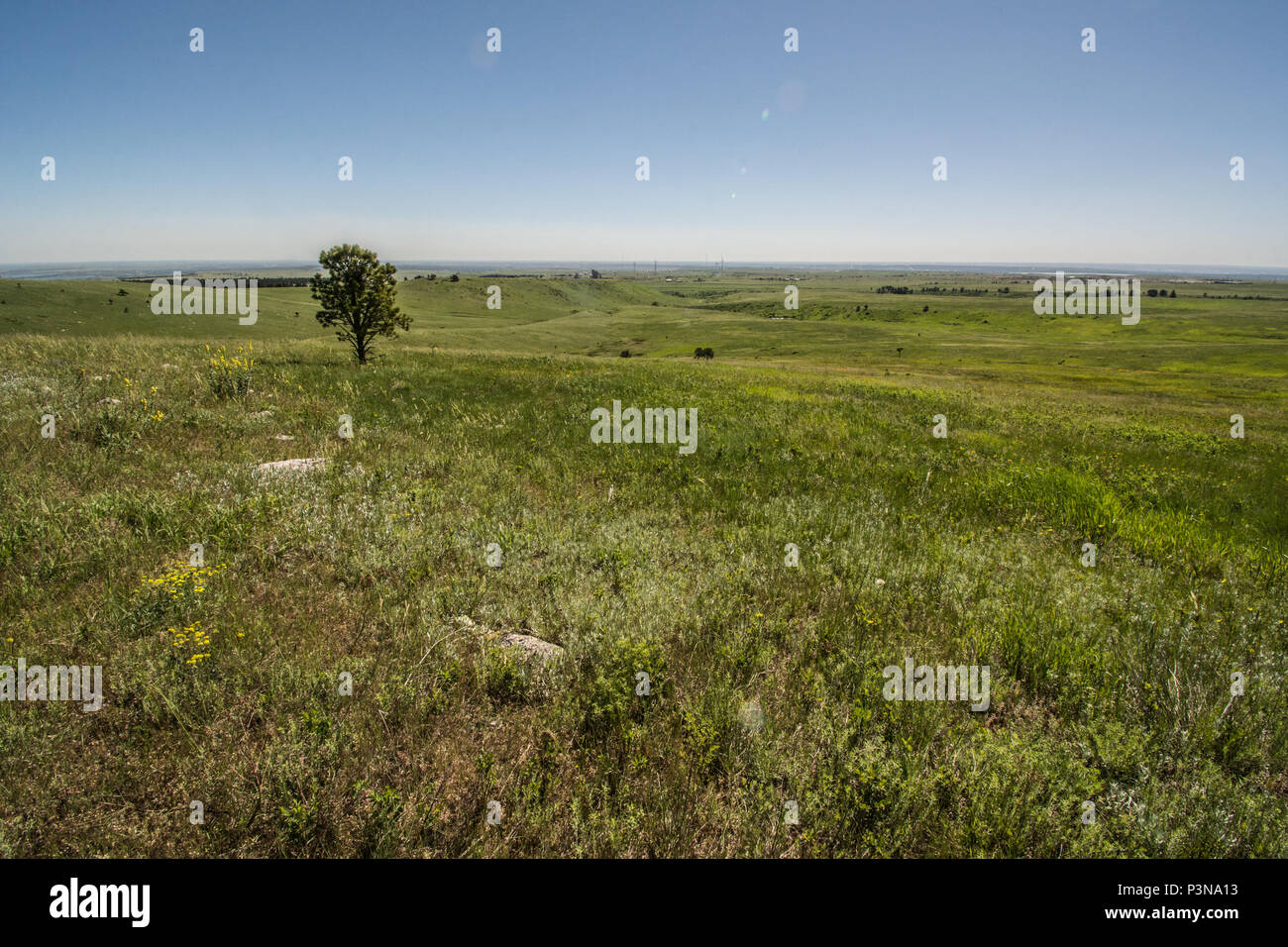 Western Great Plains Foothill and Piedmont Grassland in Jefferson County, Colorado, USA. - Stock Image