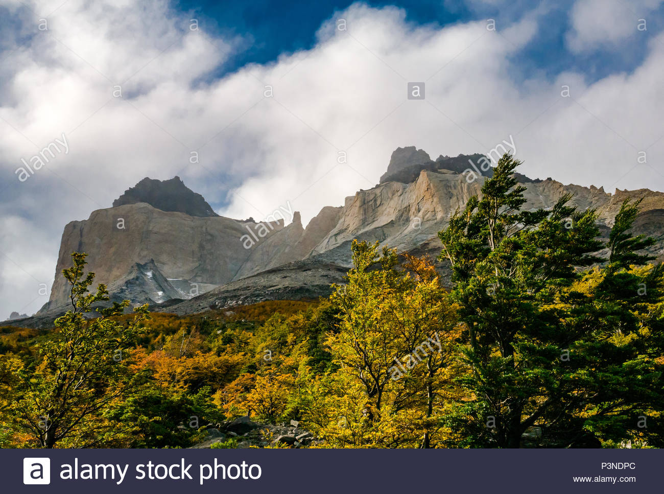 Towering peaks of Paine Horns, with granite intrusion, Torres del Paine National Park, Patagonia, Chile, South America, with Autumn trees - Stock Image