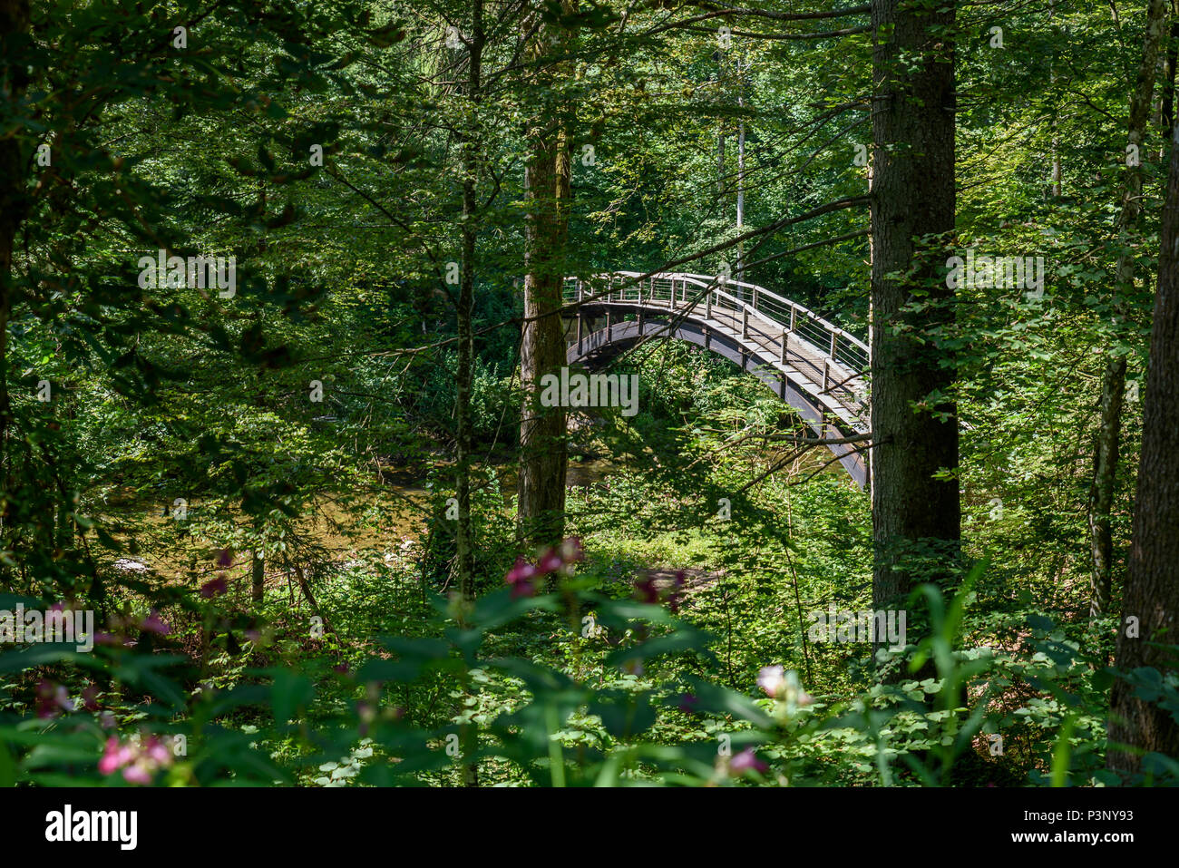 Wutach Gorge with river and bridge - Walking in beautiful landscape of the blackforest, Germany - Stock Image
