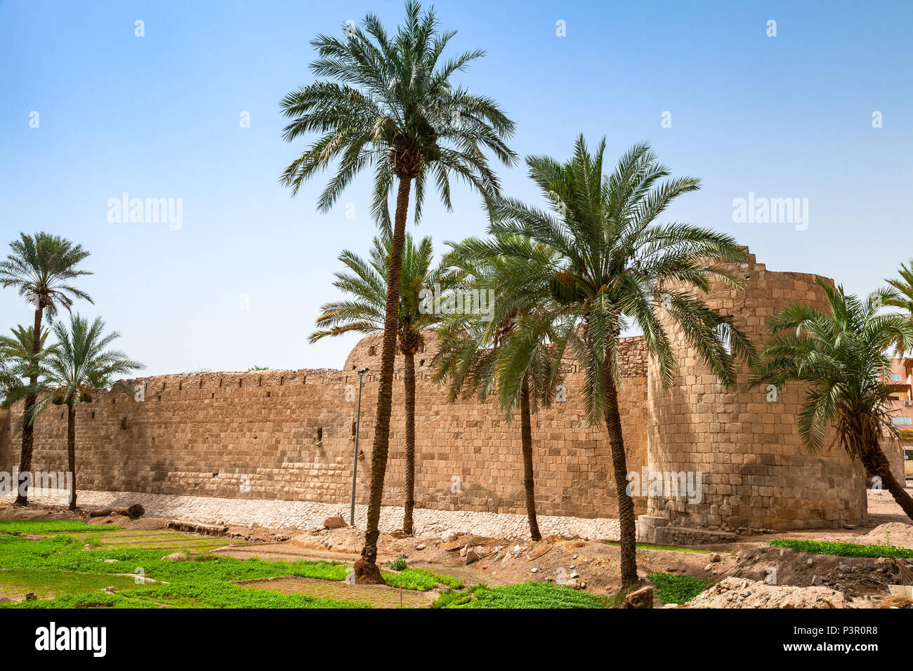 Aqaba Castle, Mamluk Castle or Aqaba Fort located in Aqaba city, Jordan - Stock Image