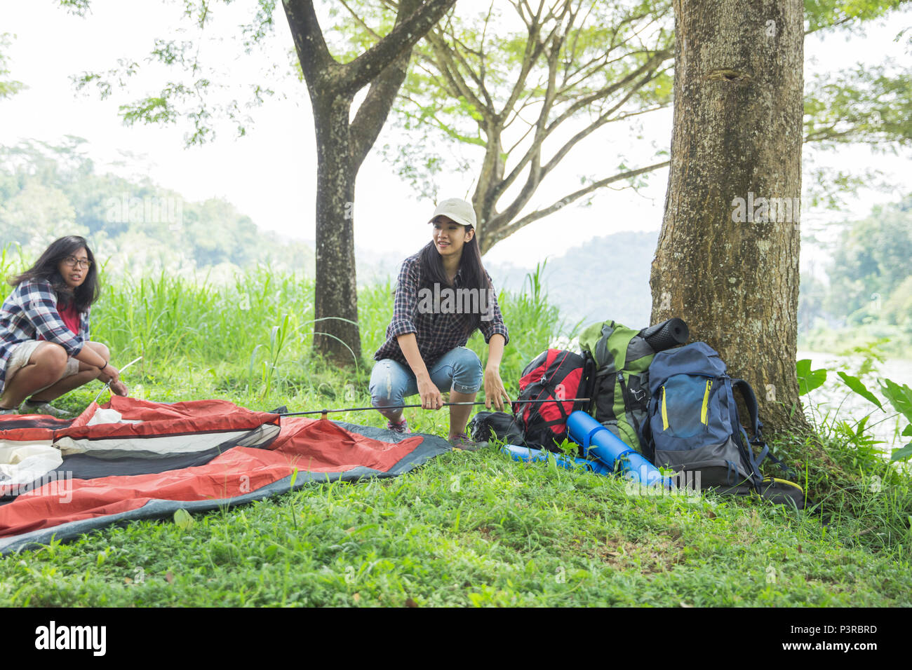 girl prepare tent nature tourism concept - Stock Image