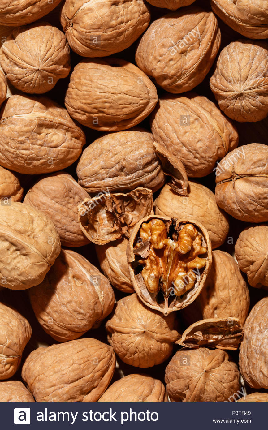 A cracked walnut lying on top of a small bunch of in shell walnuts. They may be consumed raw, roasted or toasted, or as an ingredient. - Stock Image