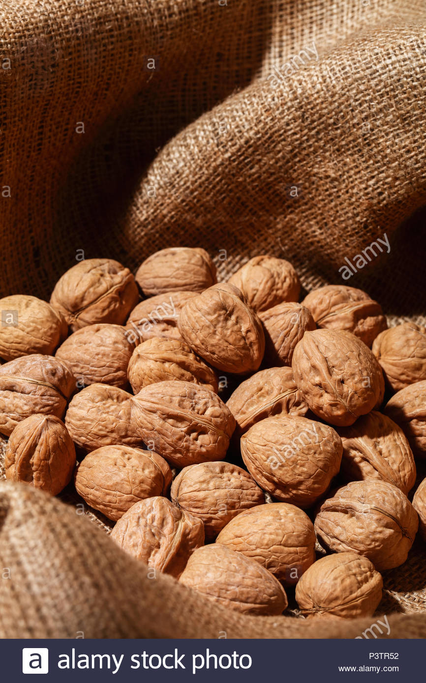 Closeup of walnuts in a burlap bag. - Stock Image