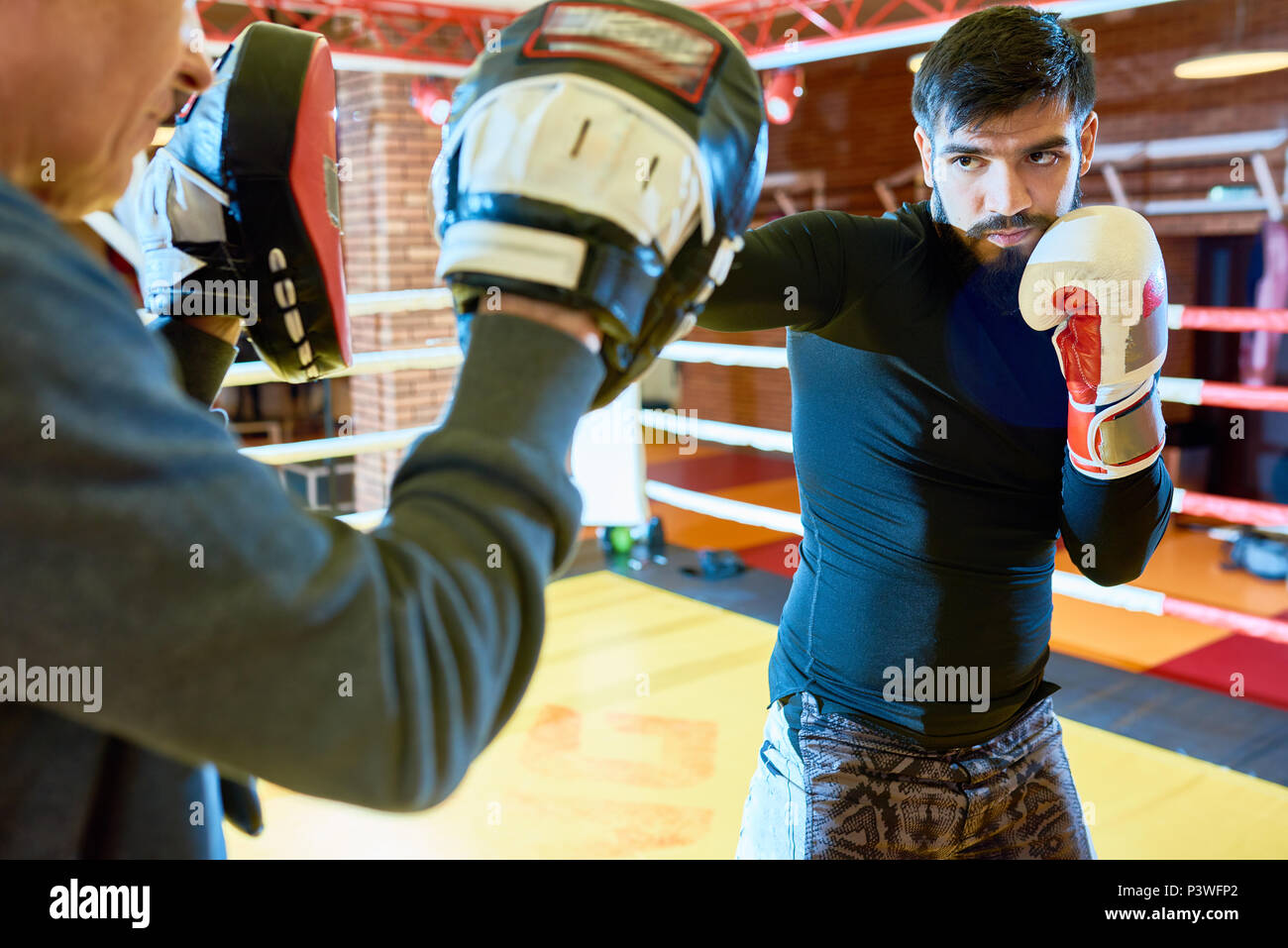 Professional trainer with boxer on ring - Stock Image