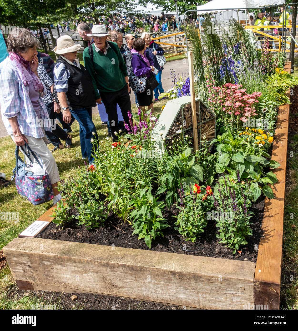 Visitors evaluating one of the Beautiful Borders entries at the Gardeners' World Live Show at the NEC, Birmingham, England, UK - Stock Image