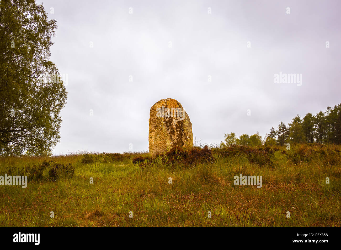 large upright stone  in a prehistoric cemetery from the Bronze Age, Vatteryd grave field, Hassleholm, Sweden, May 11, 2018 Stock Photo