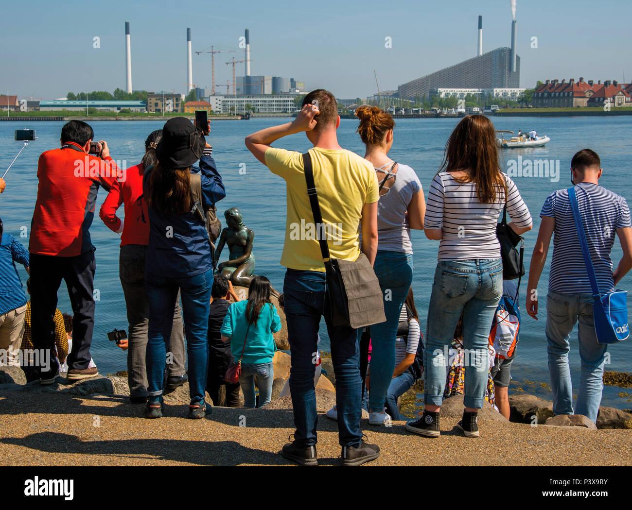Bemused crowds, Little Mermaid Copenhagen, Denmark - Stock Image