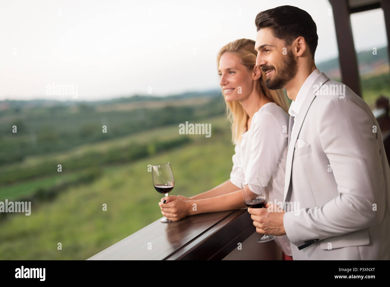 Couple toasting and celebrating with wine - Stock Image