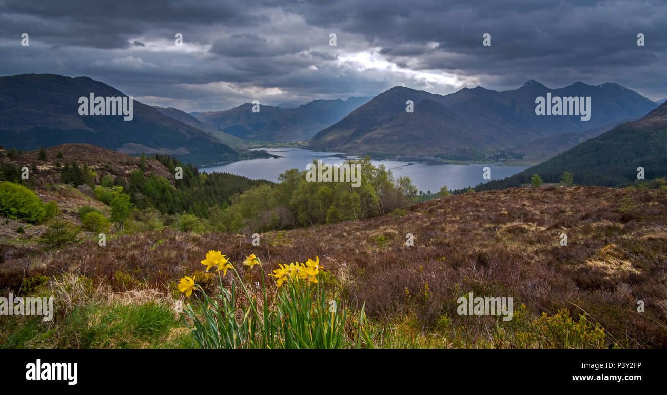 View over Loch Duich and the mountain summits of the Five Sisters of Kintail from Bealach Ratagain / Ratagan viewpoint, Highland, Scotland, UK - Stock Image