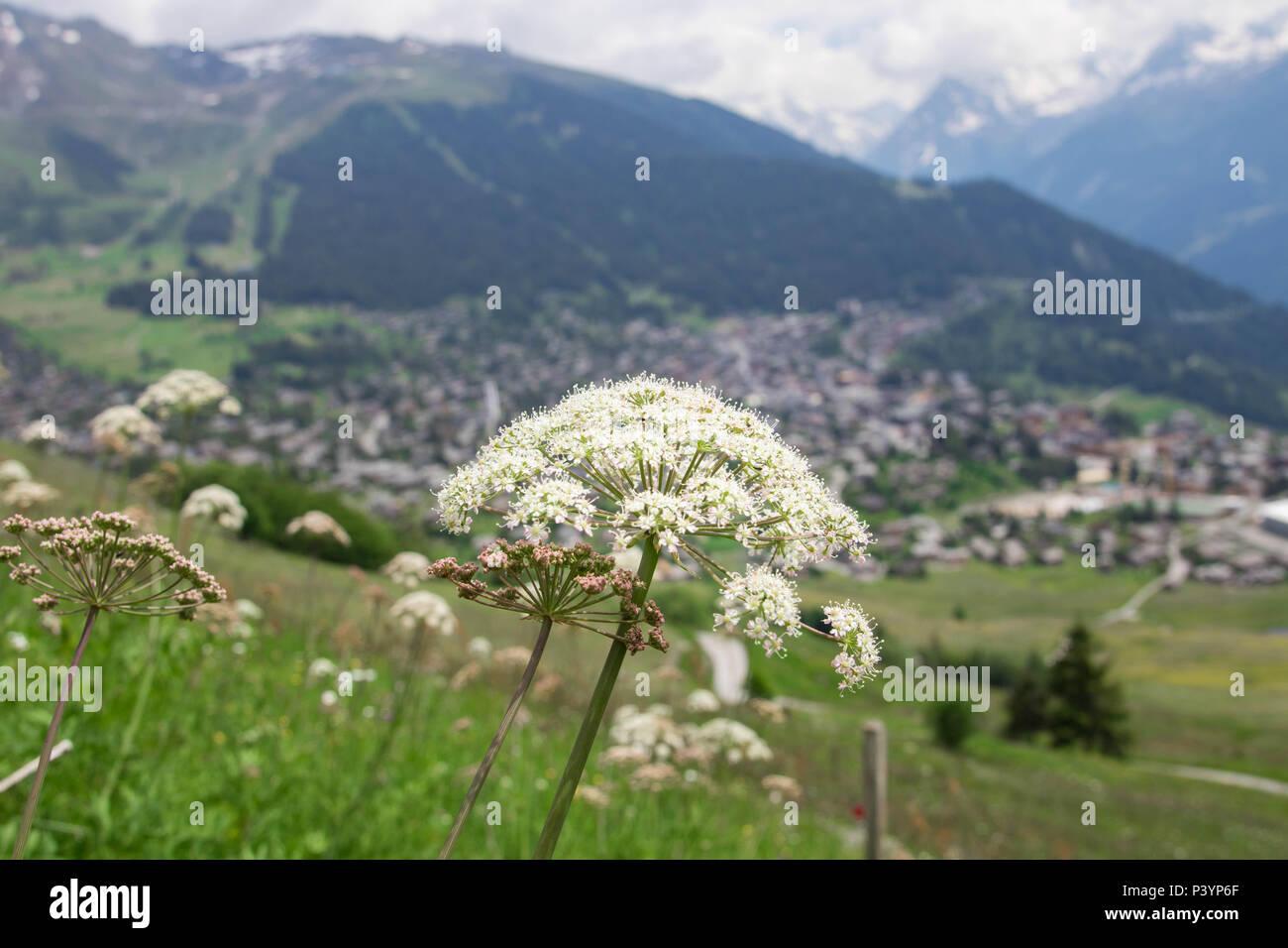 Switzerland Verbier Wallis Valais landscape view - Stock Image