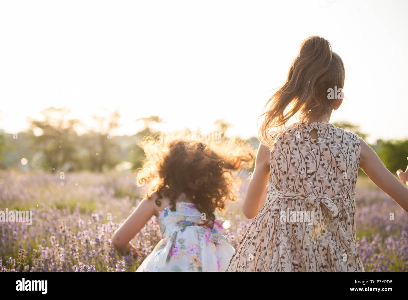 two playful small girls in dresses among lavender field play soap bubbles - Stock Image