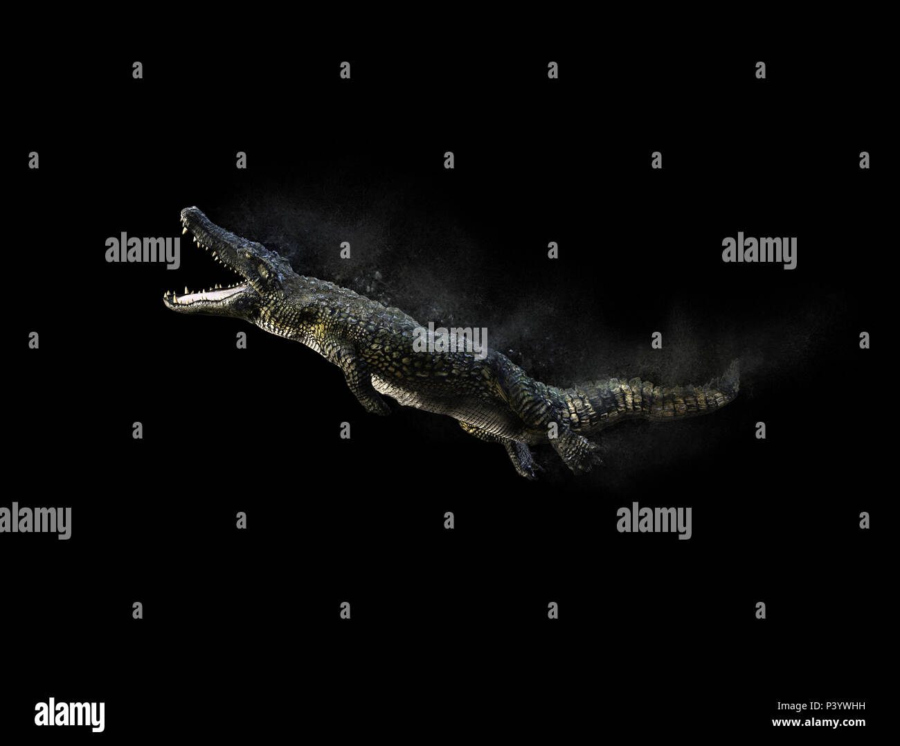 3D Illustration of a green American alligator isolated on grey background, American crocodile. - Stock Image