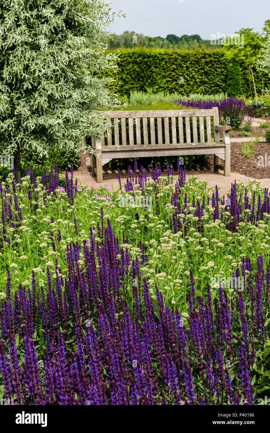 Garden seat in the modern country garden at RHS Hyde Hall. - Stock Image