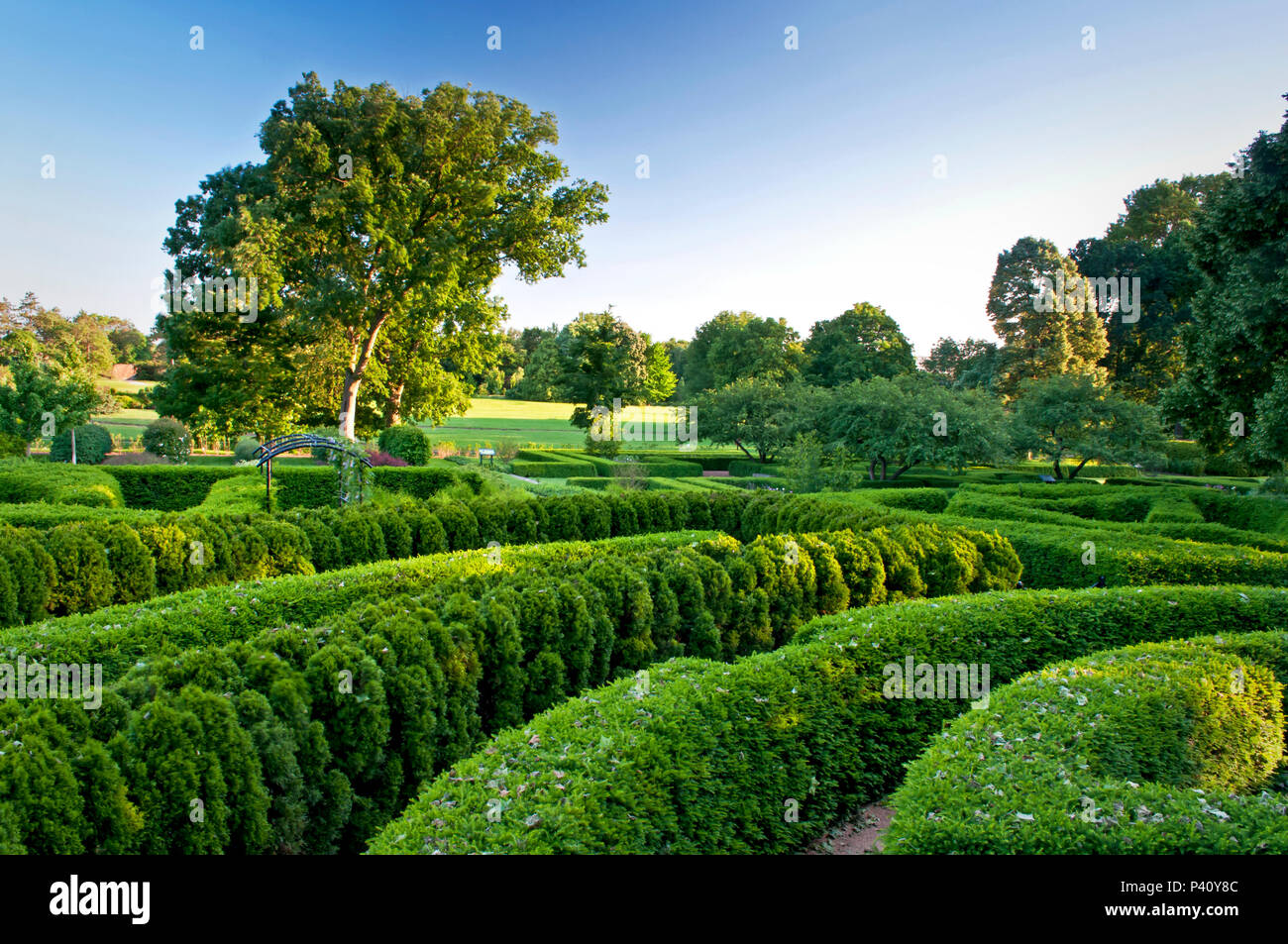 Hedges have been sculpted into an outdoor maze providing children a place to explore and play hide and seek. - Stock Image