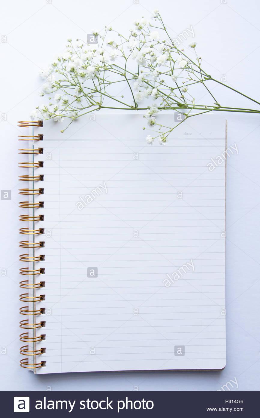 Floral Desktop Mockups on a Clean White Background - Stock Image