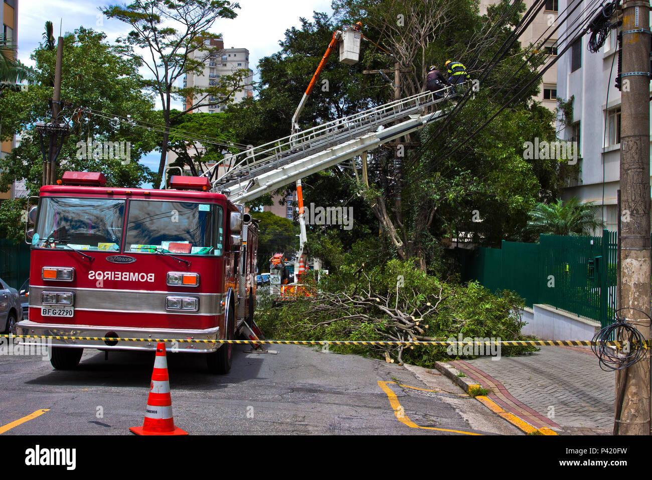 Bombeiros Carro de Bombeiros emergência urgência falta de energia Podando árvore fio elétrico eletricidade energia energia elétrica falta de energia fenômeno natural queda de árvore na rua zona urbana Stock Photo