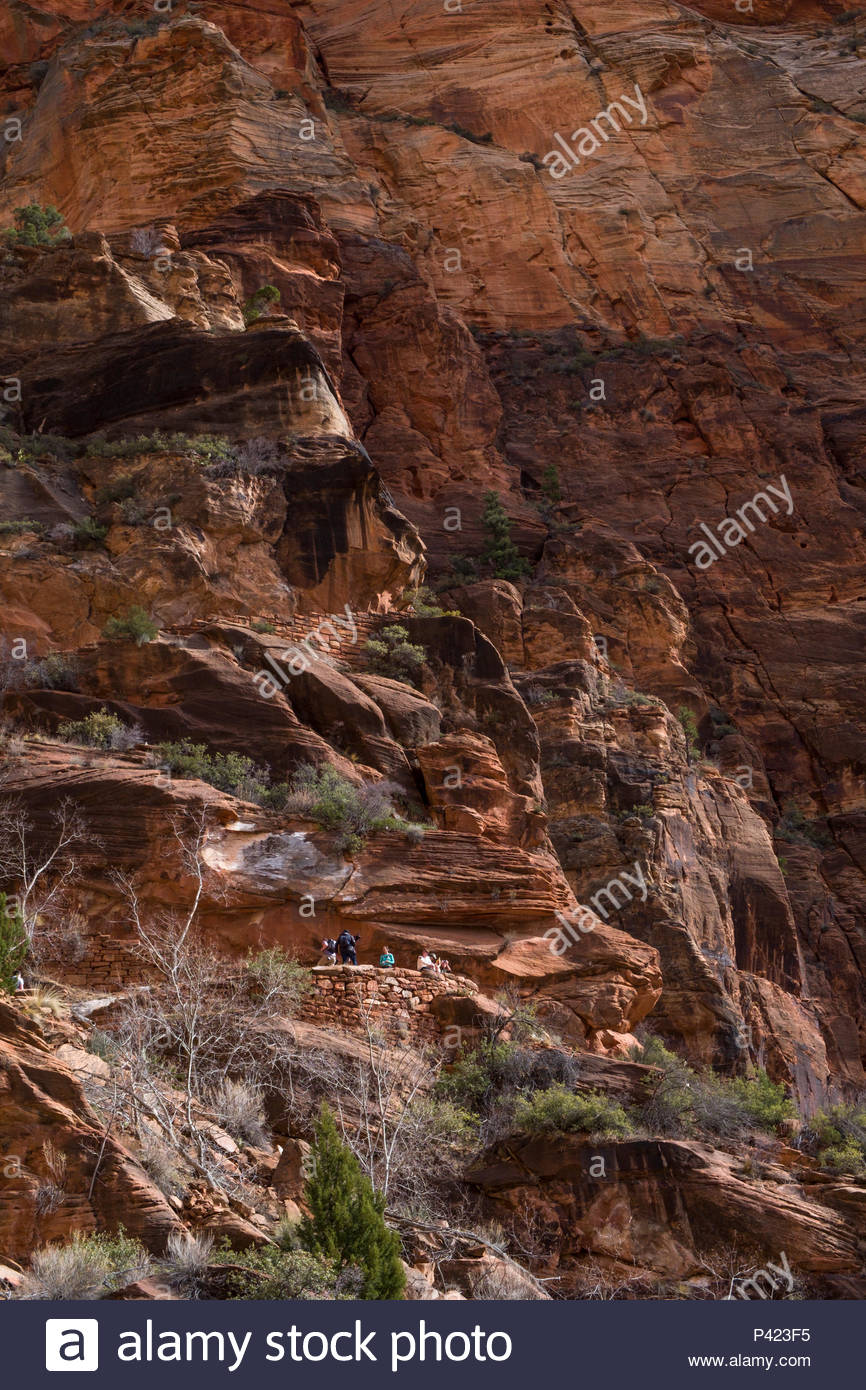 Looking up at the Walter's Wiggles portion of the West Rim Trail consisting of a series of 21 steep switchbacks carved into the sheer cliff face, Zion Stock Photo