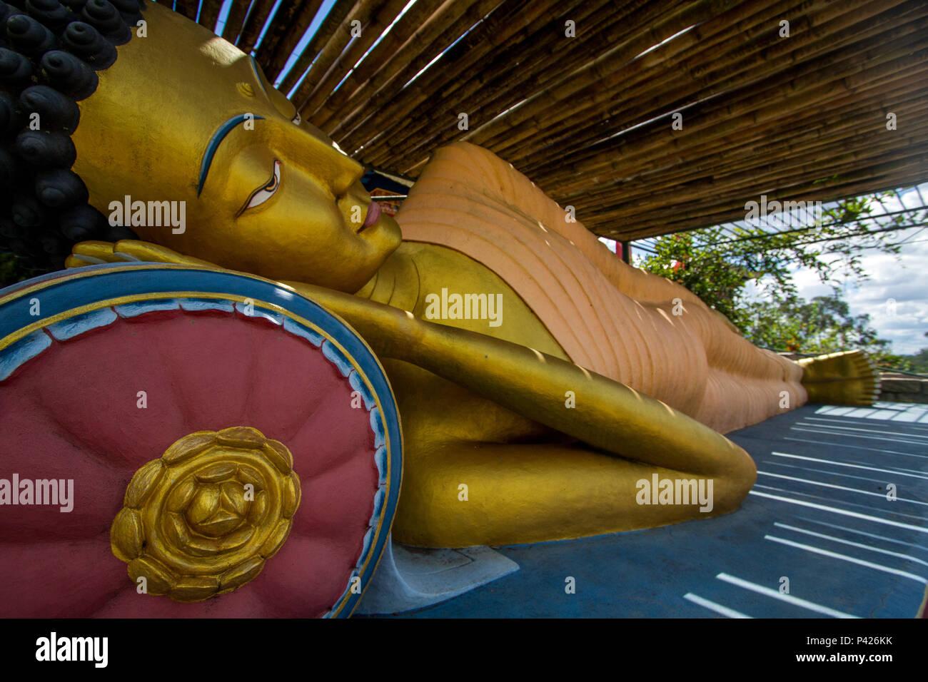 Templo Chagdud Gonpa Odsal Ling, Templo Budista Tibetano, Cotia, São Paulo. Stock Photo