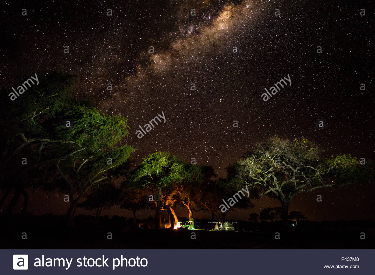The Milky Way above an expedition campsite in the Okavango Delta. Stock Photo
