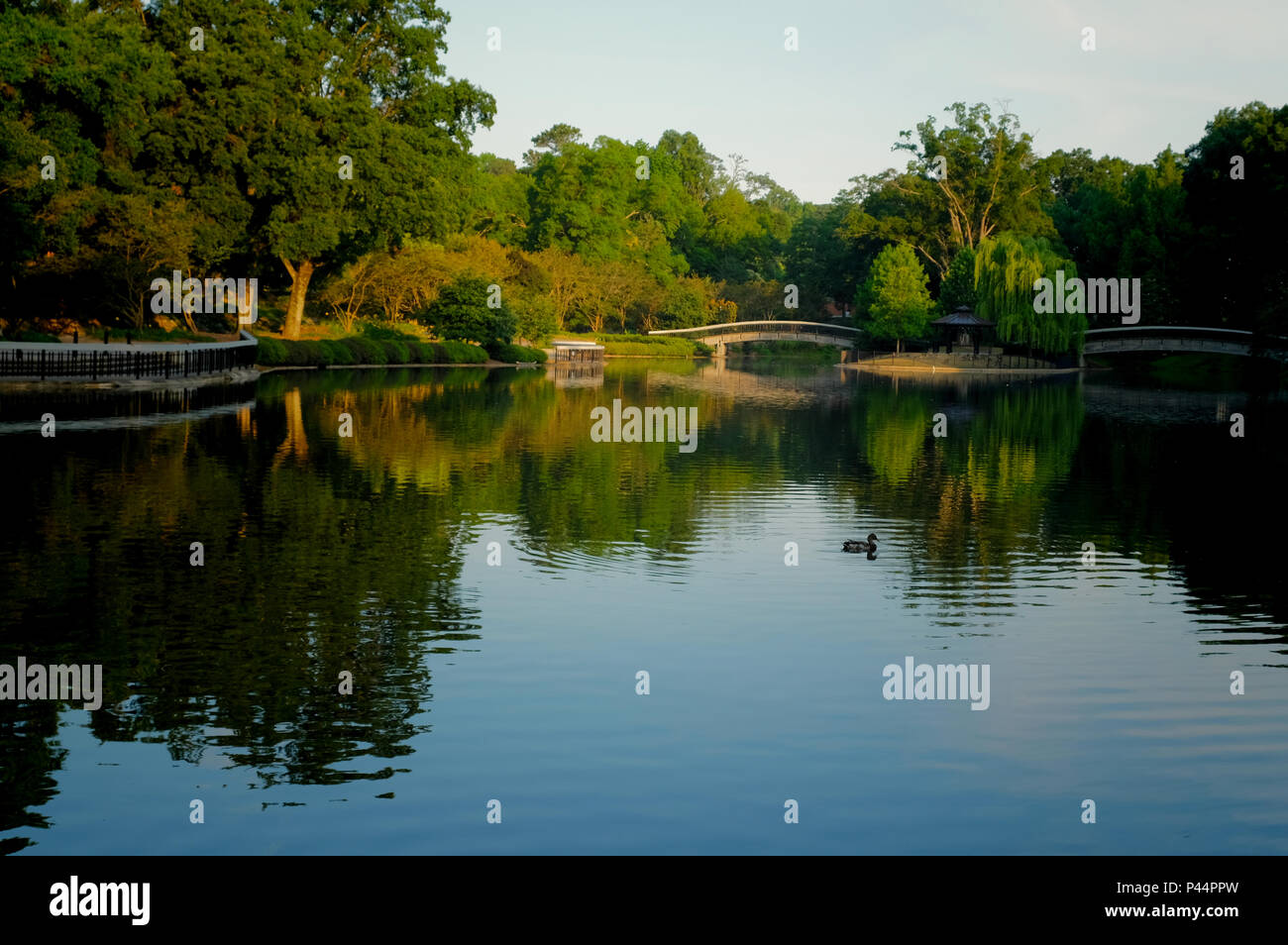 The lake at Pullen Park in downtown Raleigh North Carolina in the early morning sunshine - Stock Image