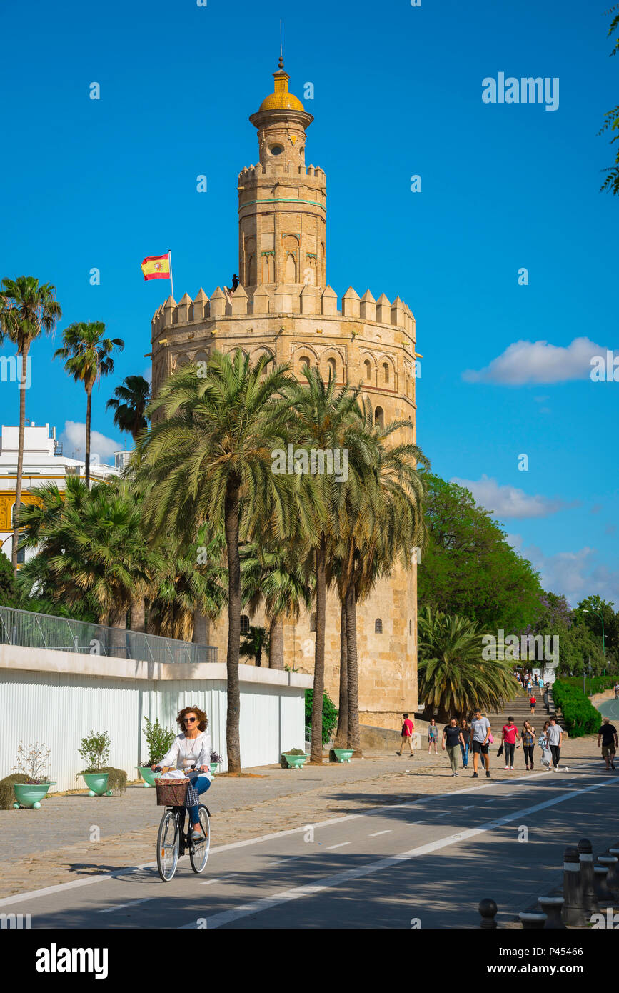 Seville Torre del Oro, view of the Moorish Torre del Oro (Tower of Gold) in the old city quarter of Seville (Sevilla), Andalucia, Spain. - Stock Image