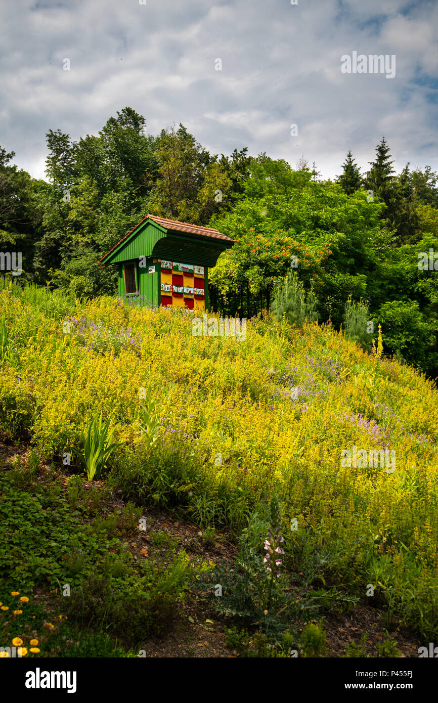 Traditional colorful wooden beehive in herbal garden. The hives are brightly painted to allow the bees find their hives. Stock Photo