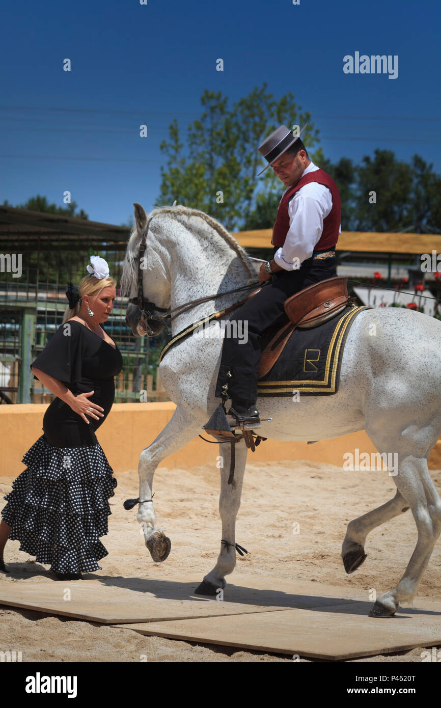 Spanish Flamenco dancing with horse and female dancer Stock Photo