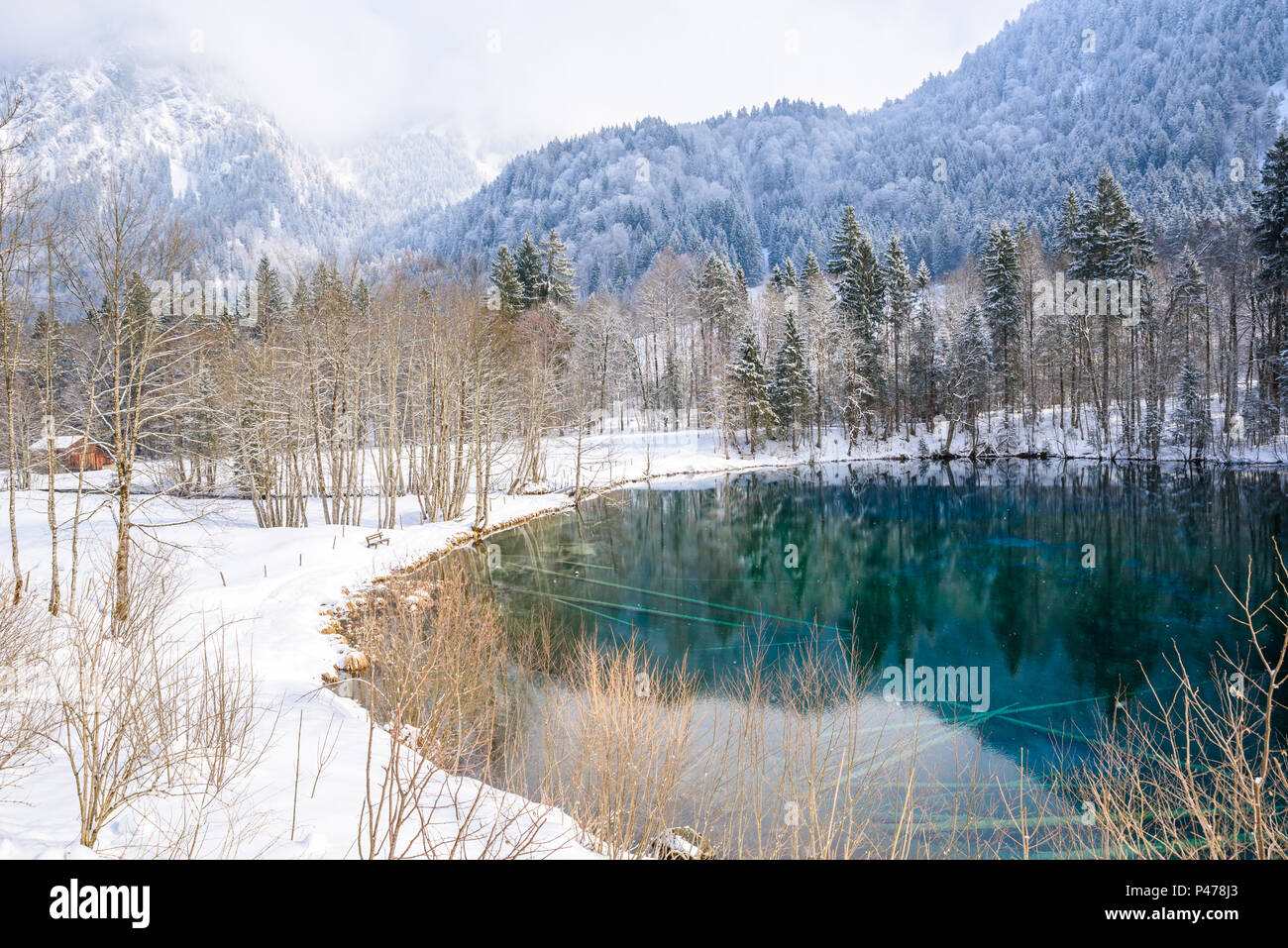 Lake Christlessee in winter at trettach valley near oberstdorf, idyllic south bavarian landscape in Germany - Stock Image