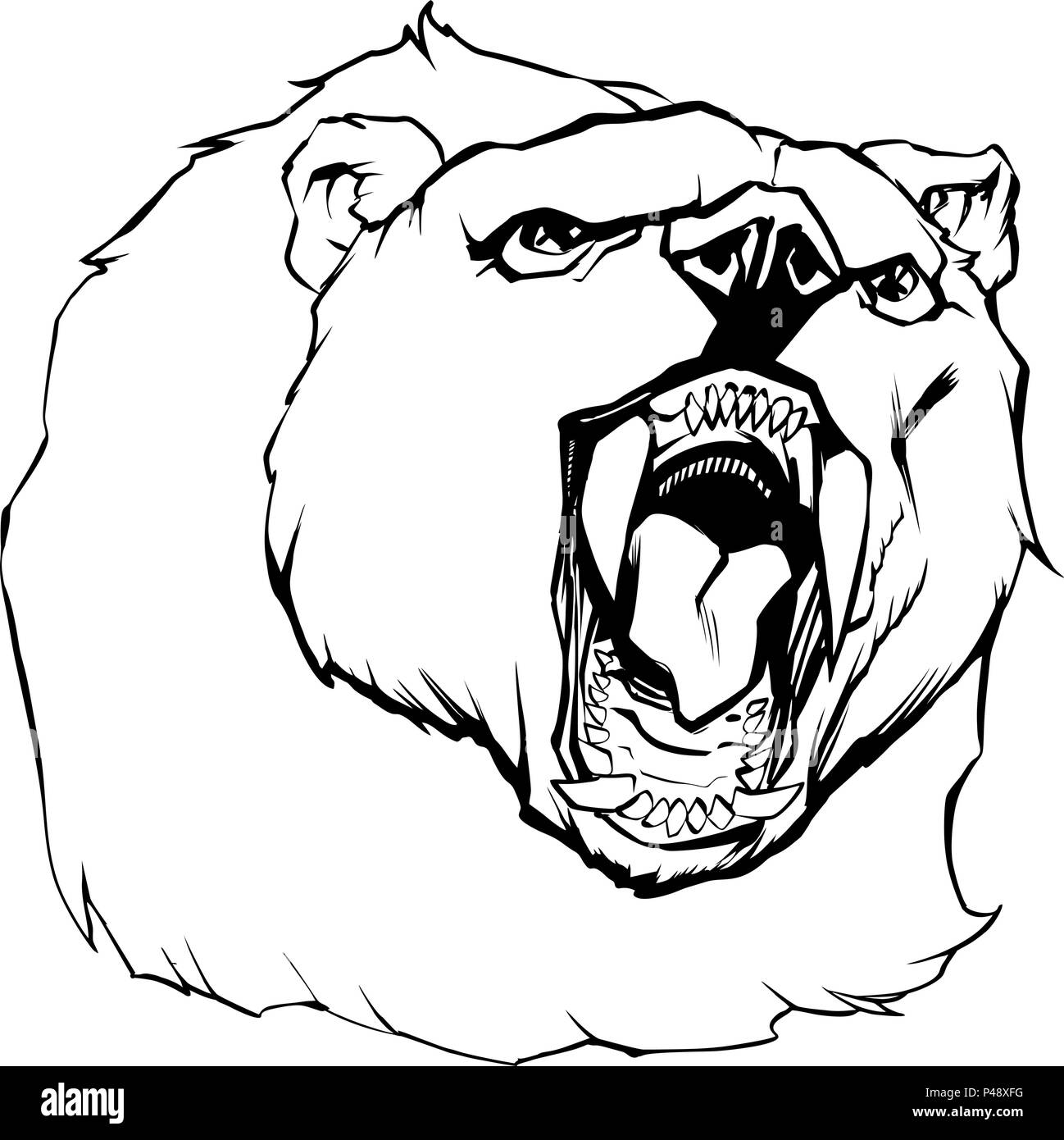 Bear Head Illustration - Stock Vector