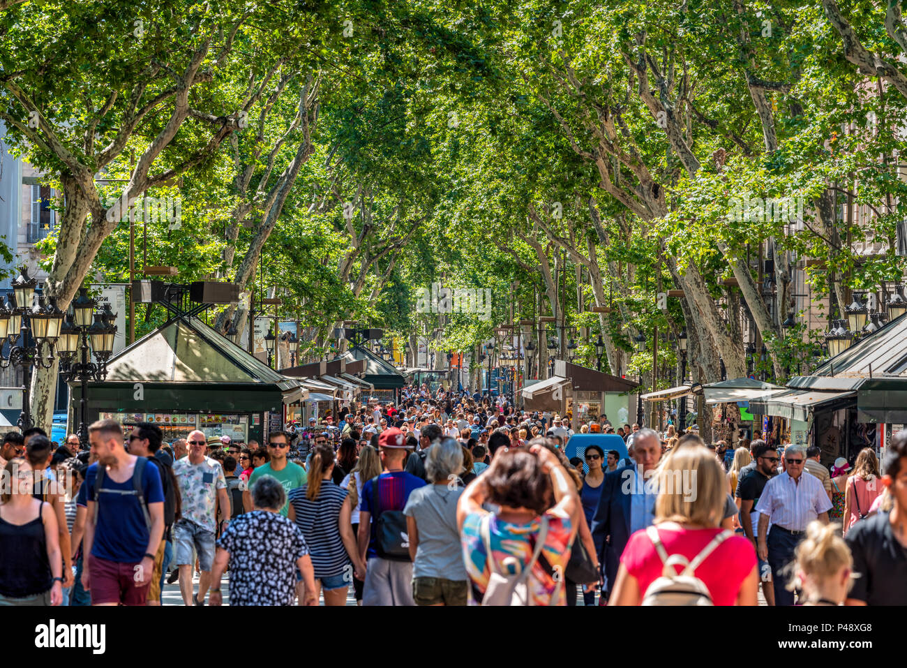 Rambla pedestrian mall, Barcelona, Catalonia, Spain - Stock Image