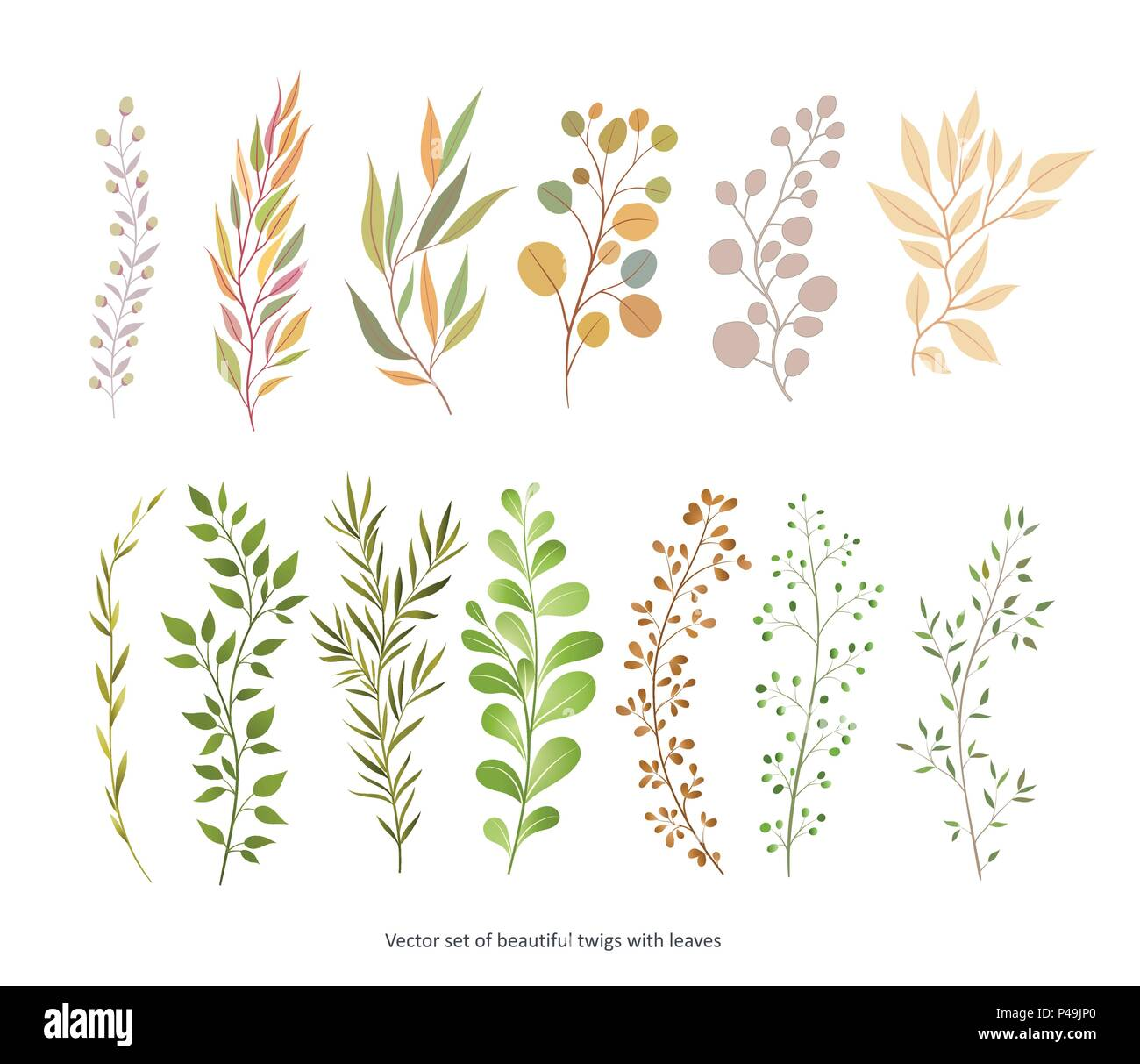 Handdrawn Vector Watercolour style, nature illustration. Set of  leaves and branches, Imitation of watercolor, isolated on white.   - Stock Vector