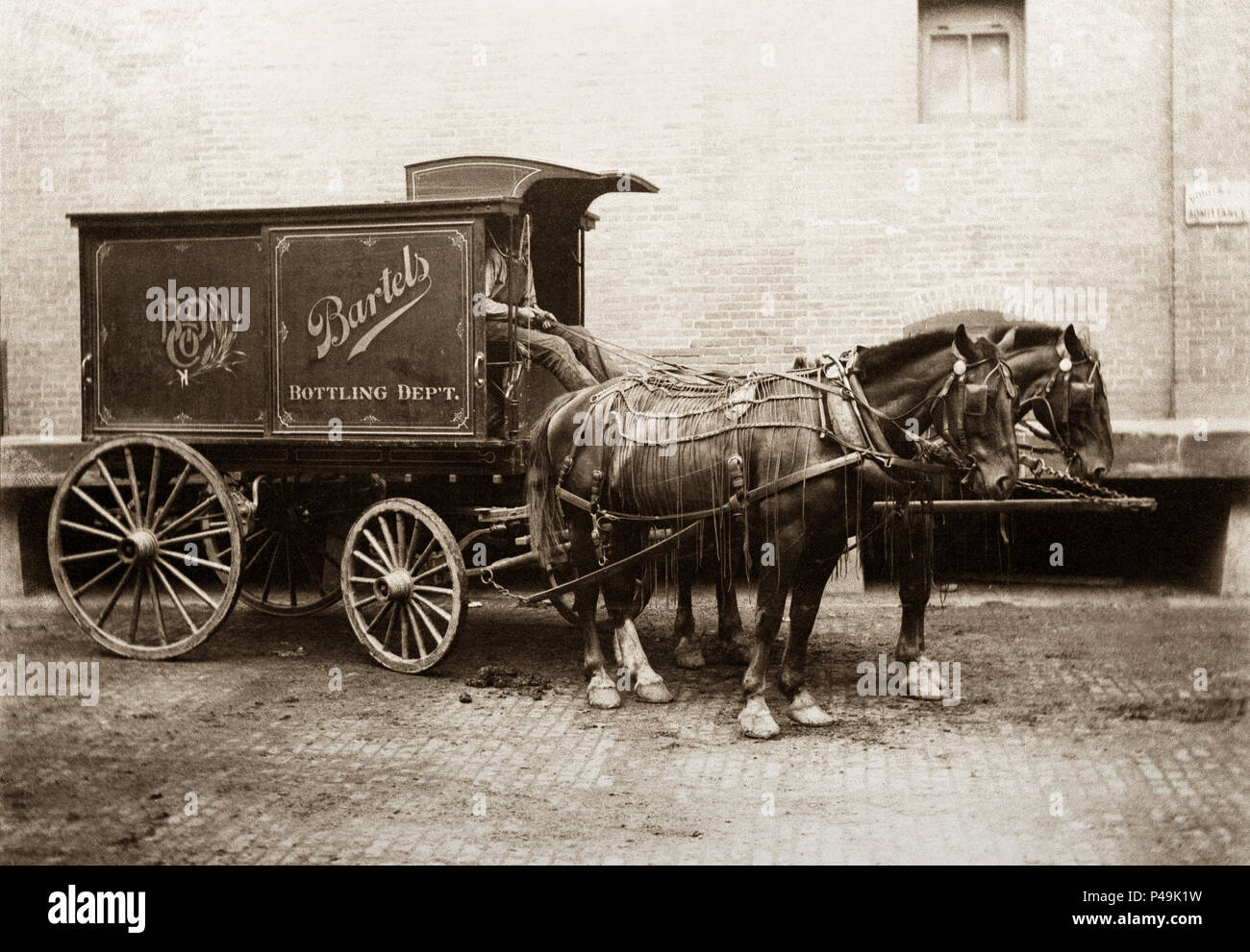 This is a two horse Delivery wagon of the Bartels Brewery (Beer) (Bartels Bottling) Edwardsville Pennsylvania during the early 1900s.This brewery was in existence from 1898-1968. Brewery operations were shut down by National Prohibition in the years of 1920-1933 .The Bartels label was acquired by the Lion Brewing Company of Wilkes-Barre, and is still sold locally. Lion Brewery, Inc, in Wilkes-Barre, Pennsylvania, is one of the oldest breweries still in operation within Pennsylvania. Its beers and sodas are sold in Pennsylvania and neighboring states. Stock Photo