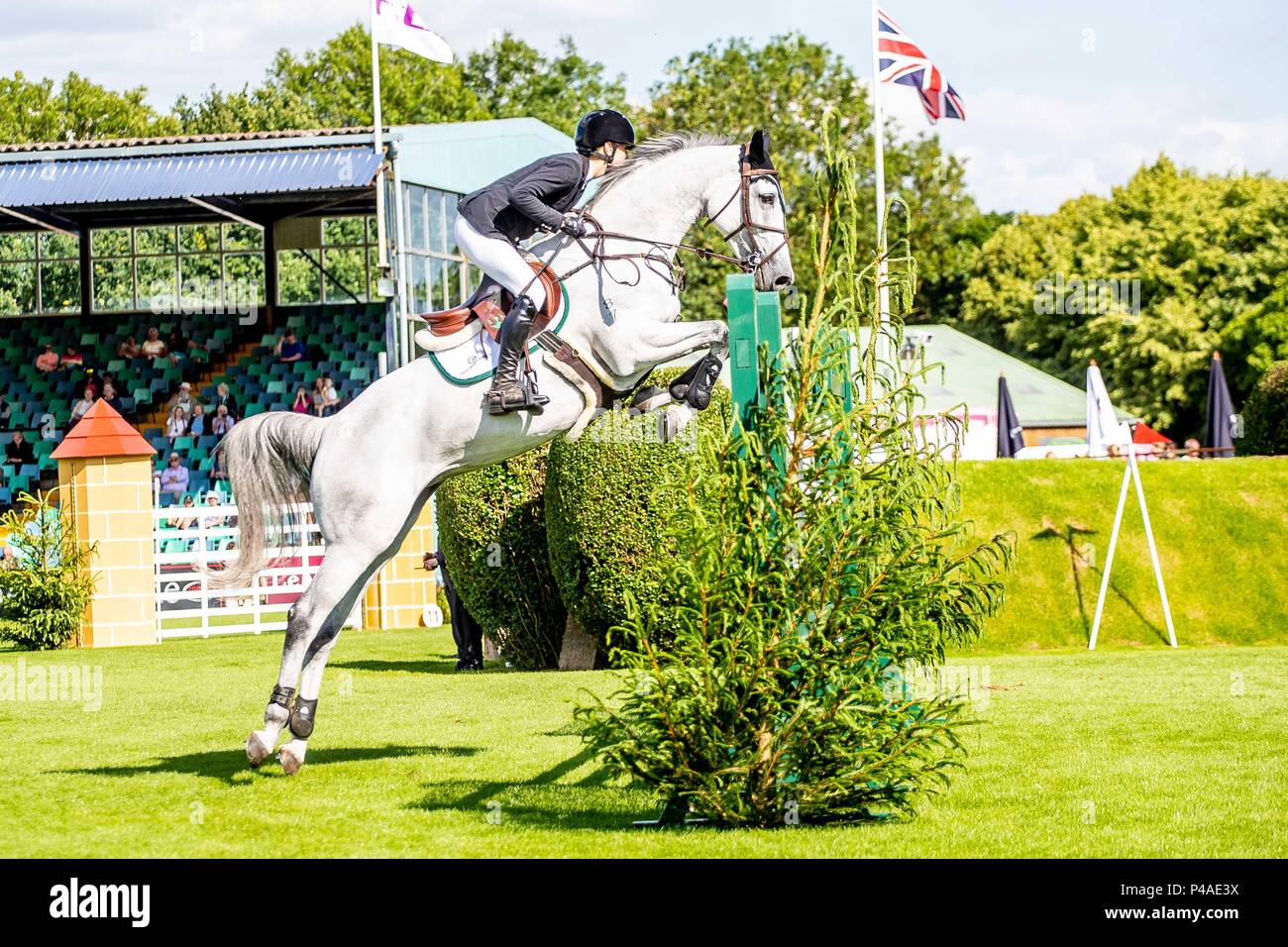 Hilary Scott  riding Oaks Milky Way. NZL. The Bunn Lesiure Tankard. CSI4*. The Al Shira'aa Hickstead Derby Meeting. Showjumping. The All England Jumping Course. Hickstead. West Sussex. UK. Day 2. 21/06/2018. - Stock Image