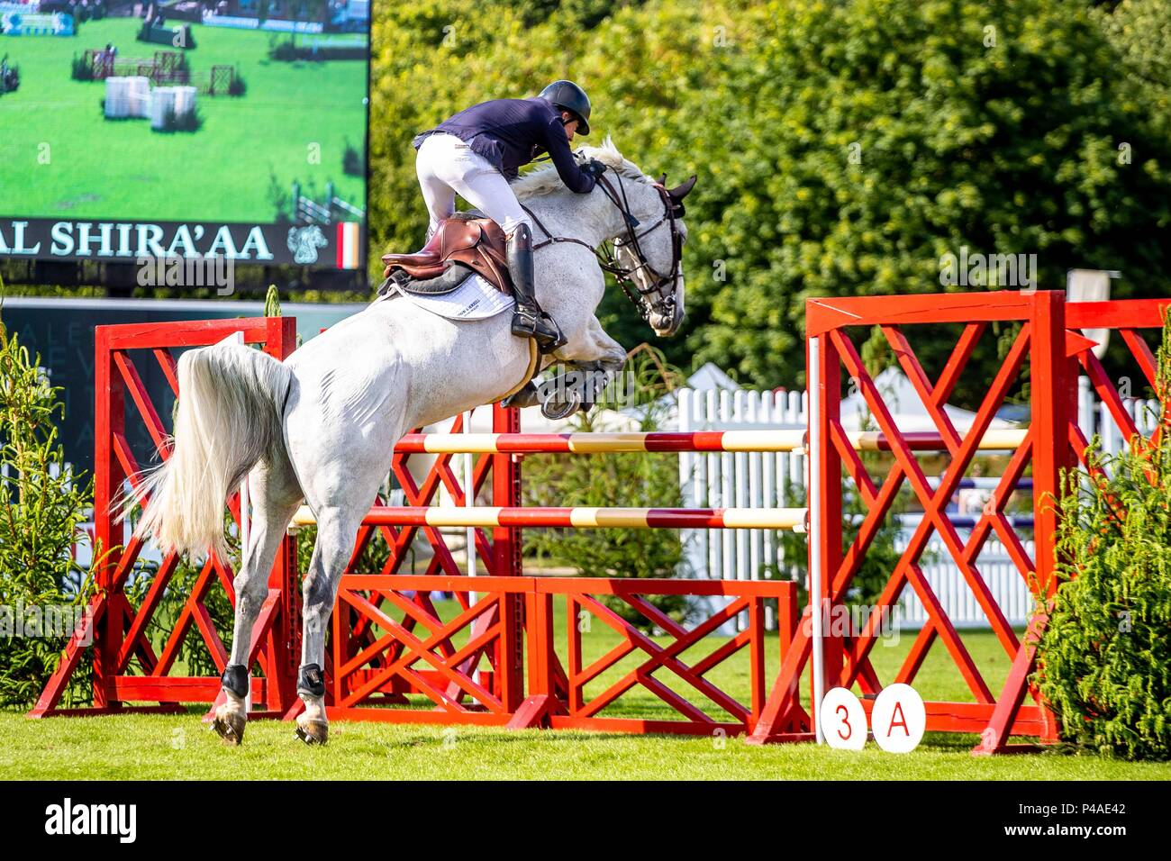 Michael Whitaker riding Flawless.  GBR. The Bunn Lesiure Tankard. CSI4*. The Al Shira'aa Hickstead Derby Meeting. Showjumping. The All England Jumping Course. Hickstead. West Sussex. UK. Day 2. 21/06/2018. Stock Photo