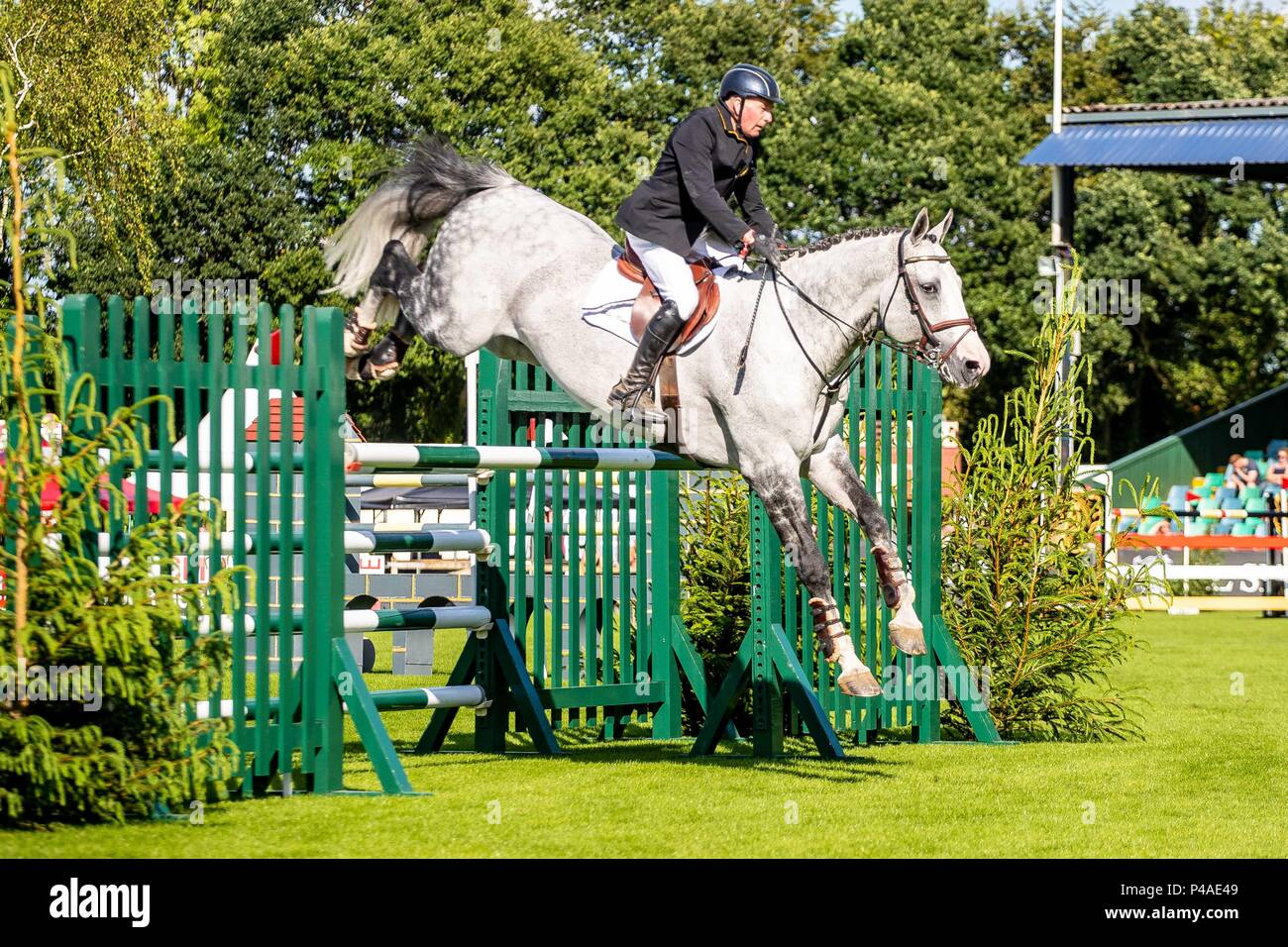 John Whitaker riding Cassinis Chaplin. GBR. The Bunn Lesiure Tankard. CSI4*. The Al Shira'aa Hickstead Derby Meeting. Showjumping. The All England Jumping Course. Hickstead. West Sussex. UK. Day 2. 21/06/2018. - Stock Image