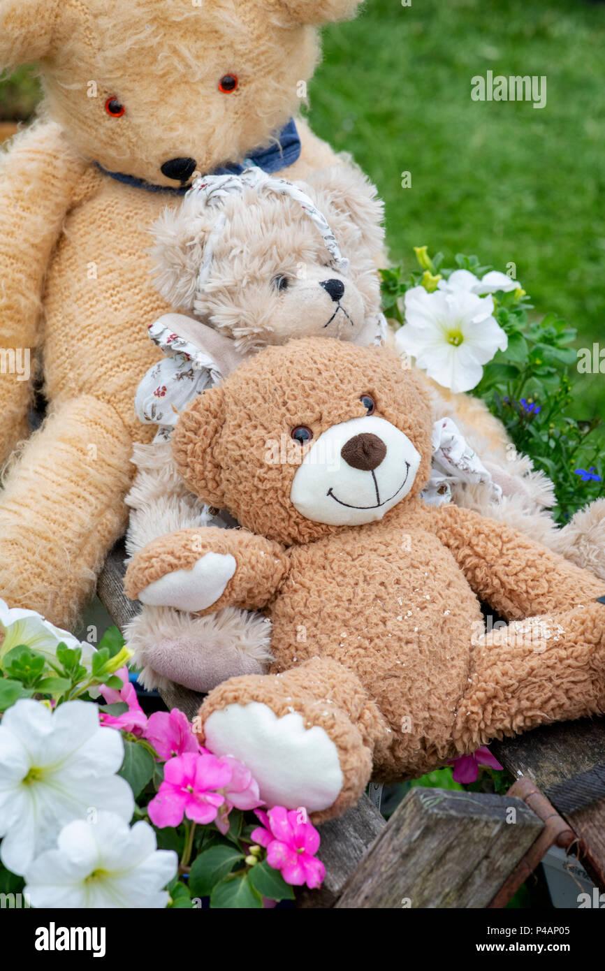 Three teddy bears on a flower show display. UK Stock Photo