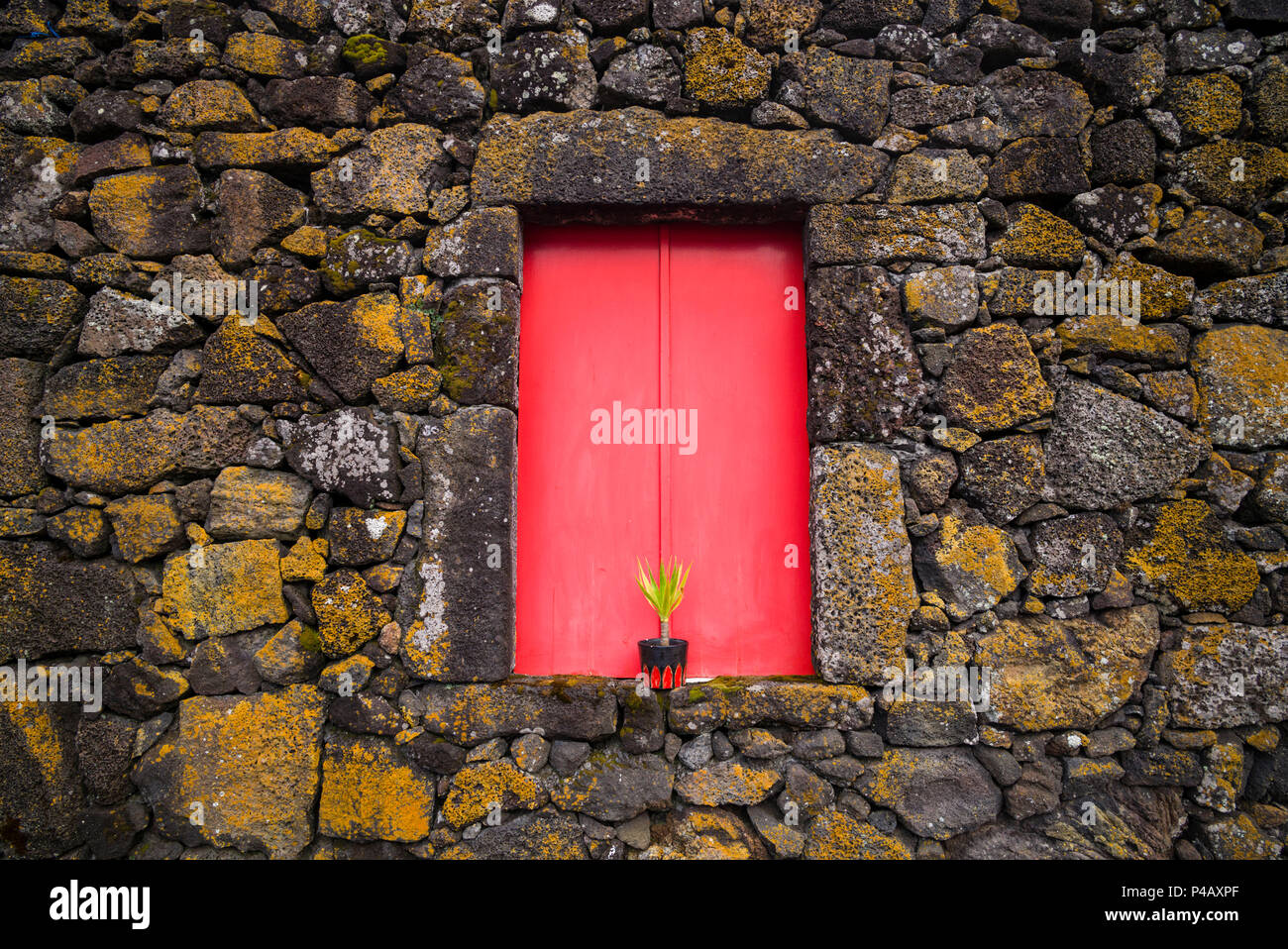 Portugal, Azores, Pico Island, Madalena, red doors on barn - Stock Image