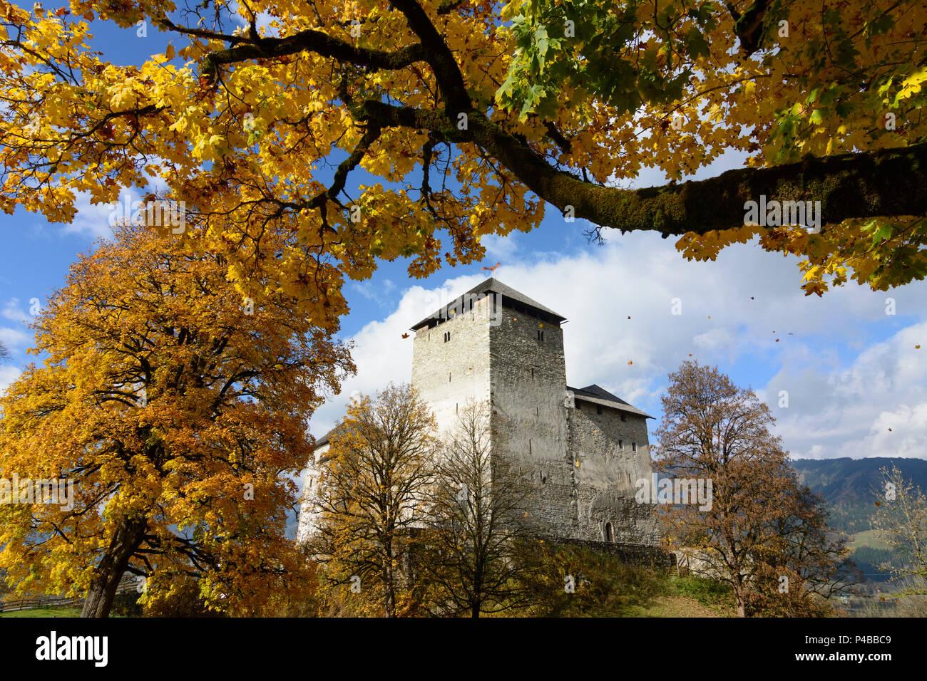 Kaprun, Kaprun Castle, maple trees, Pinzgau, Salzburg, Austria Stock Photo