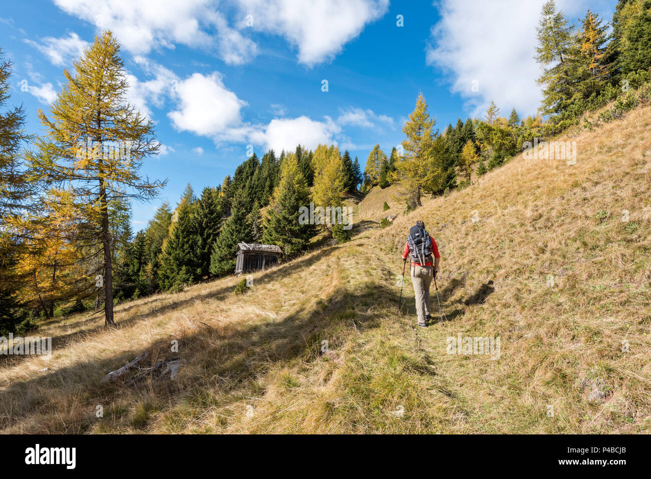 Mount Sasso Bianco, Dolomites, Alleghe, province of Belluno, Veneto, Italy, Europe. A hiker in the ascend to the summit of mount Sasso Bianco - Stock Image