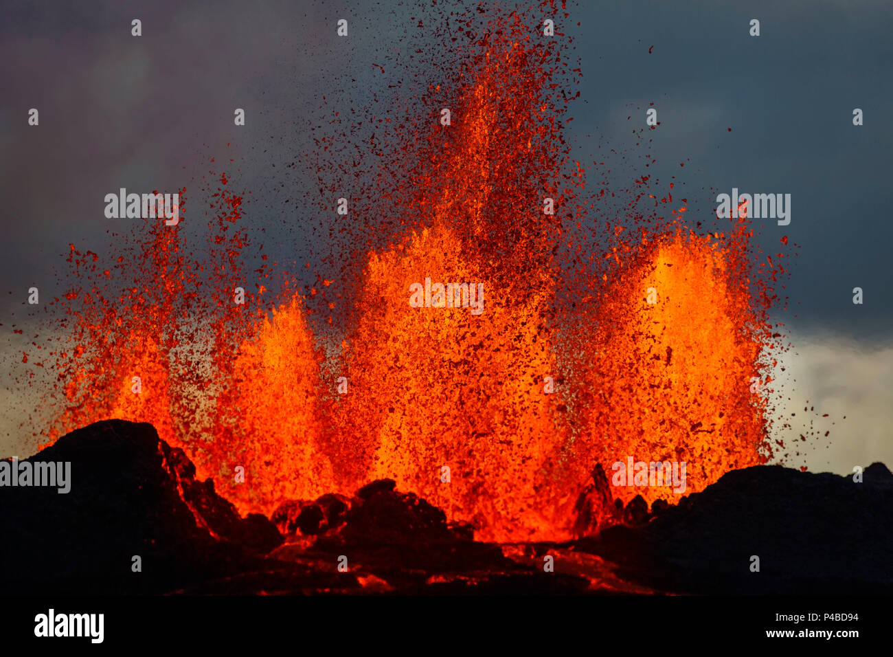Lava fountains at the Holuhraun Fissure eruption near Bardarbunga Volcano, Iceland. August 29, 2014 a fissure eruption started in Holuhraun at the northern end of a magma intrusion, which had moved progressively north, from the Bardarbunga volcano. Bardarbunga is a stratovolcano located under Vatnajokull, Iceland's most extensive glacier. Picture Date-Sept. 2, 2014 - Stock Image