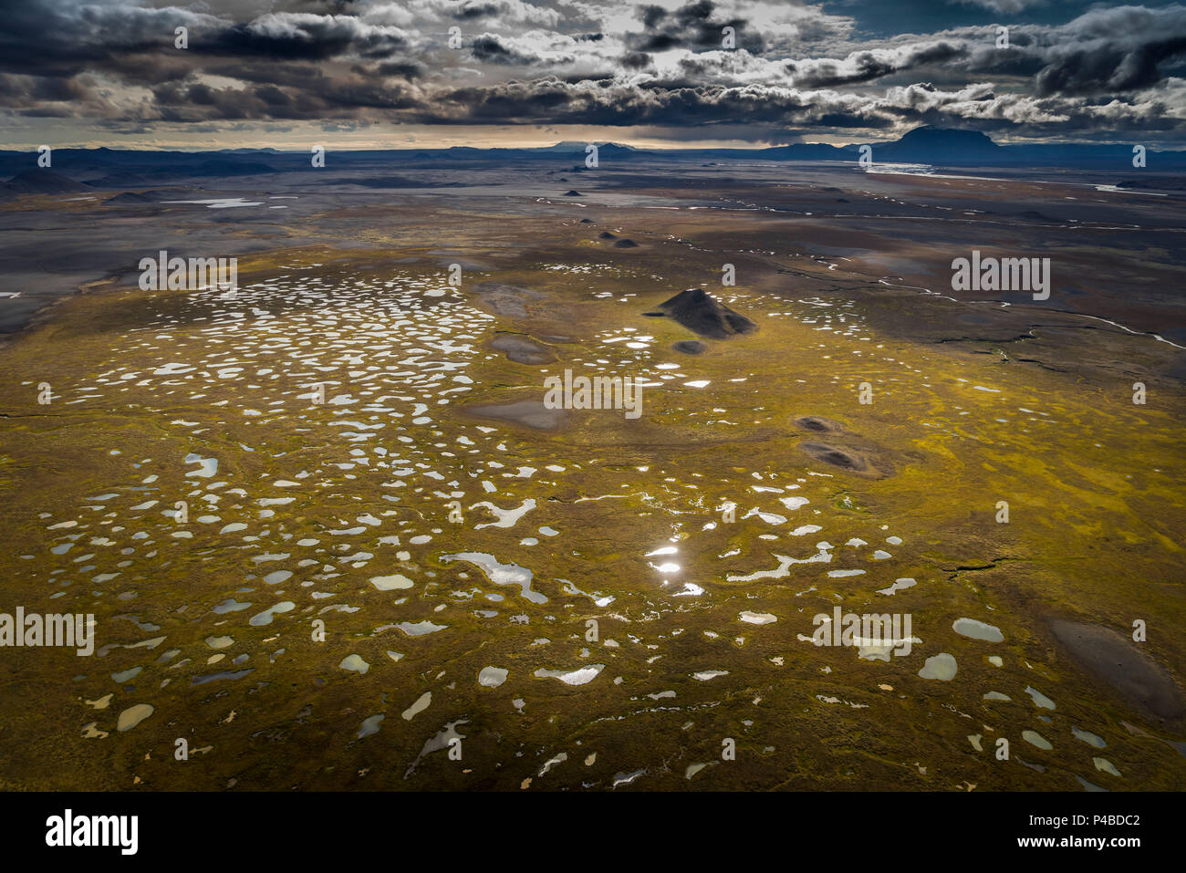 Lava fields and moss by Holuhraun. August 29, 2014 a fissure eruption started in Holuhraun at the northern end of a magma intrusion, which had moved progressively north, from the Bardarbunga volcano. Bardarbunga is a stratovolcano located under Vatnajokull, Iceland's most extensive glacier. - Stock Image