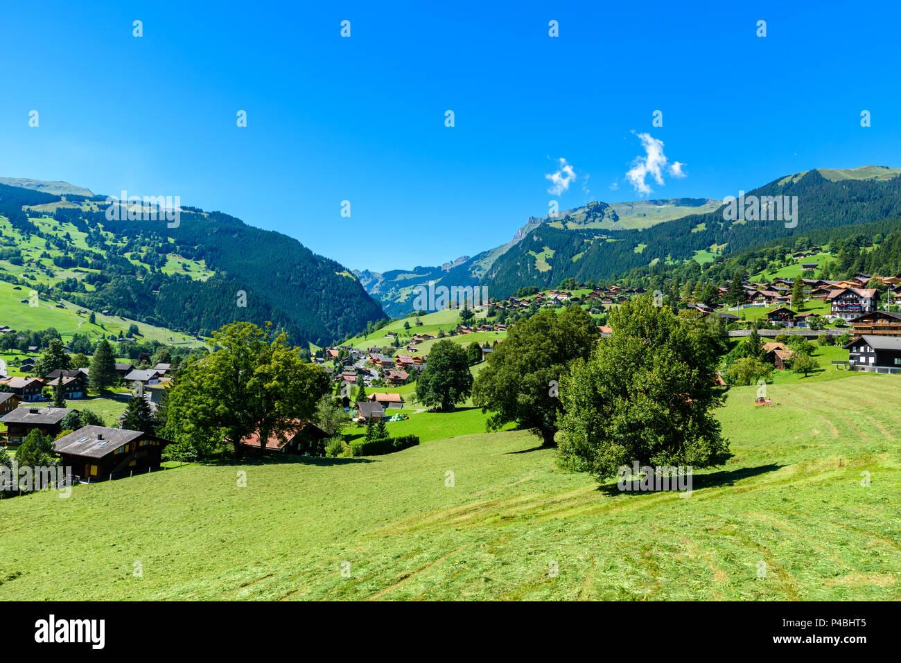 Grindelwald Beautiful Village In Mountain Scenery Switzerland