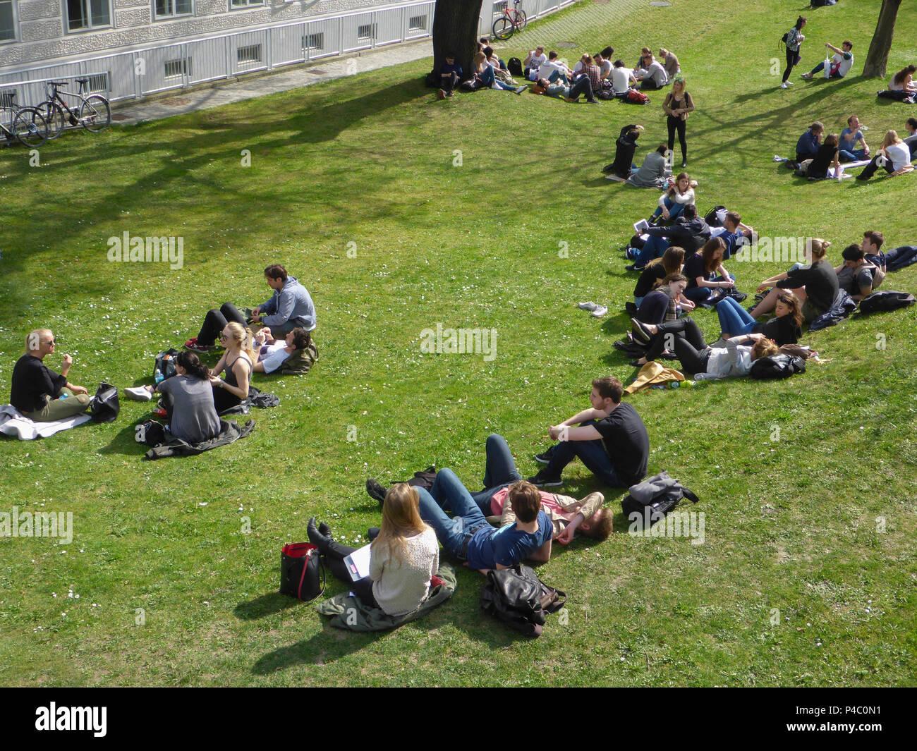 Vienna, students sitting and lying at meadow at Medizinische Universität (Medical University), 09. Alsergrund, Wien, Austria - Stock Image