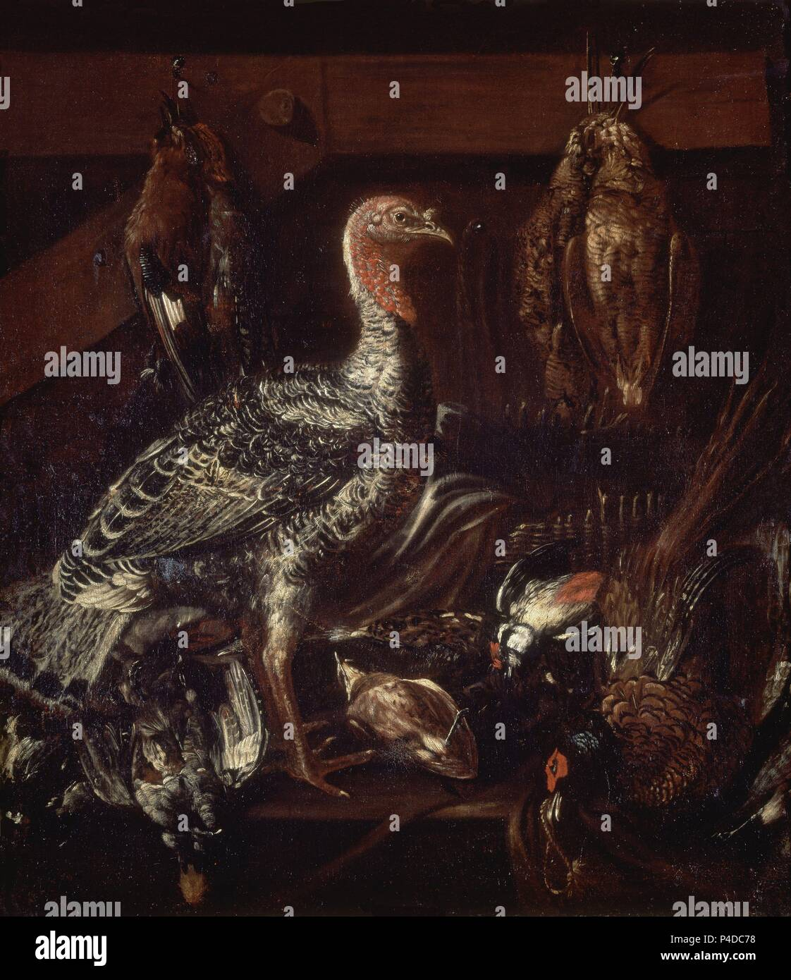 'Still Life with Birds', 17th century, Oil on canvas, 95 x 83 cm, P03115. Author: ITALIAN ANONYMOUS. Location: MUSEO DEL PRADO-PINTURA, MADRID, SPAIN. - Stock Image