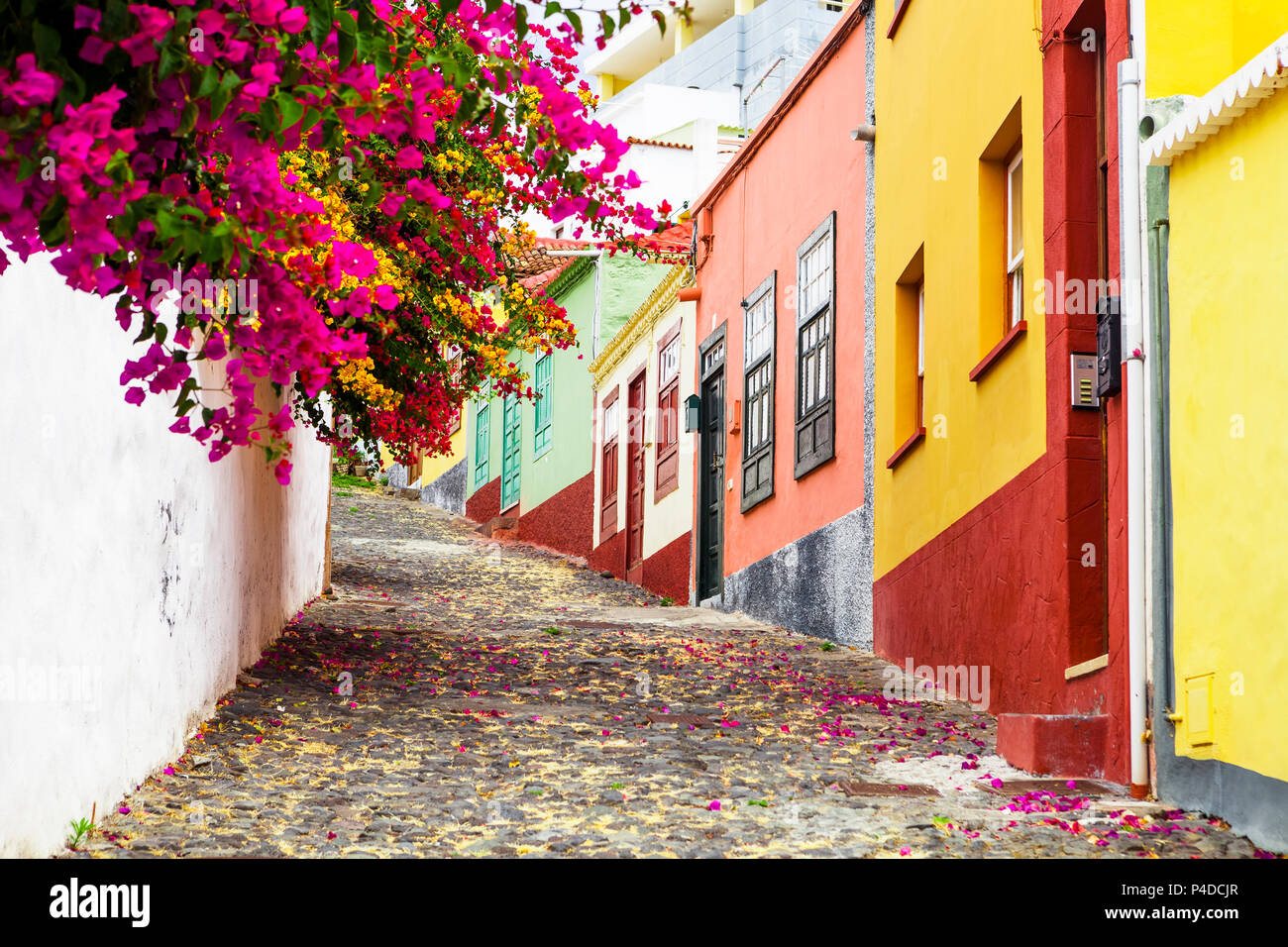 colorful and street with flowers in santa cruz la palma canary islands
