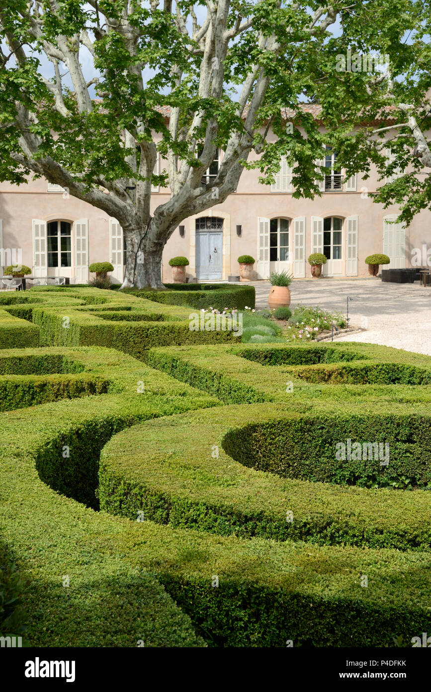 Clipped Boxwood Hedges or Topiary in the Formal French Garden at Château Sainte Roseline Arc-sur-Argens Var Provence France - Stock Image