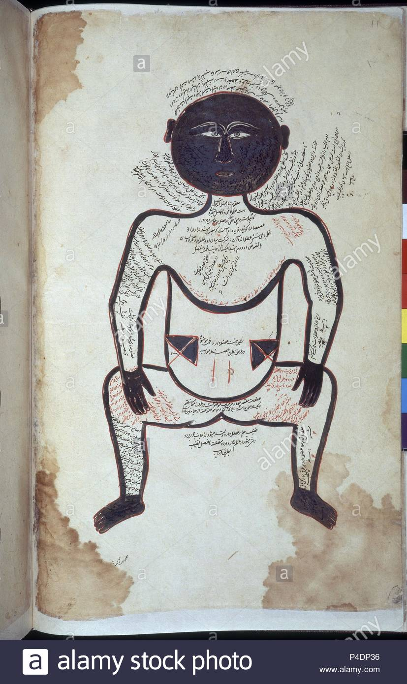 MANUSCRITO ARABE 2296 - DIAGRAMA ANATOMICO DE HOMBRE NEGRO F11- S XIII.  Author: Tasrih-I Mansuri (13th cent.). Location: BRITISH MUSEUM LIBRARY,  LONDON, ...