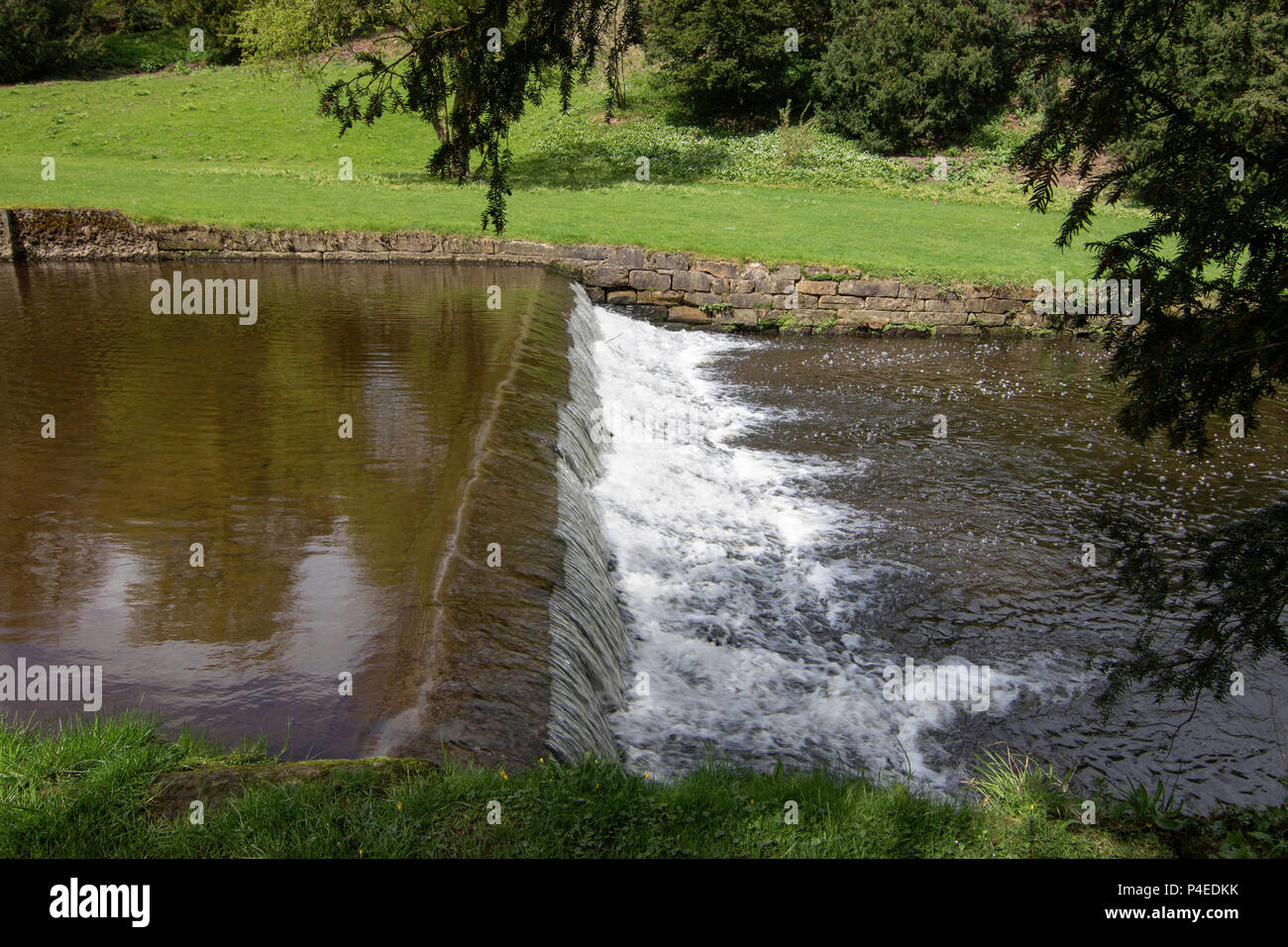 River Skell Weir at Studley Royal,Ripon,North Yorkshire,England,UK. - Stock Image