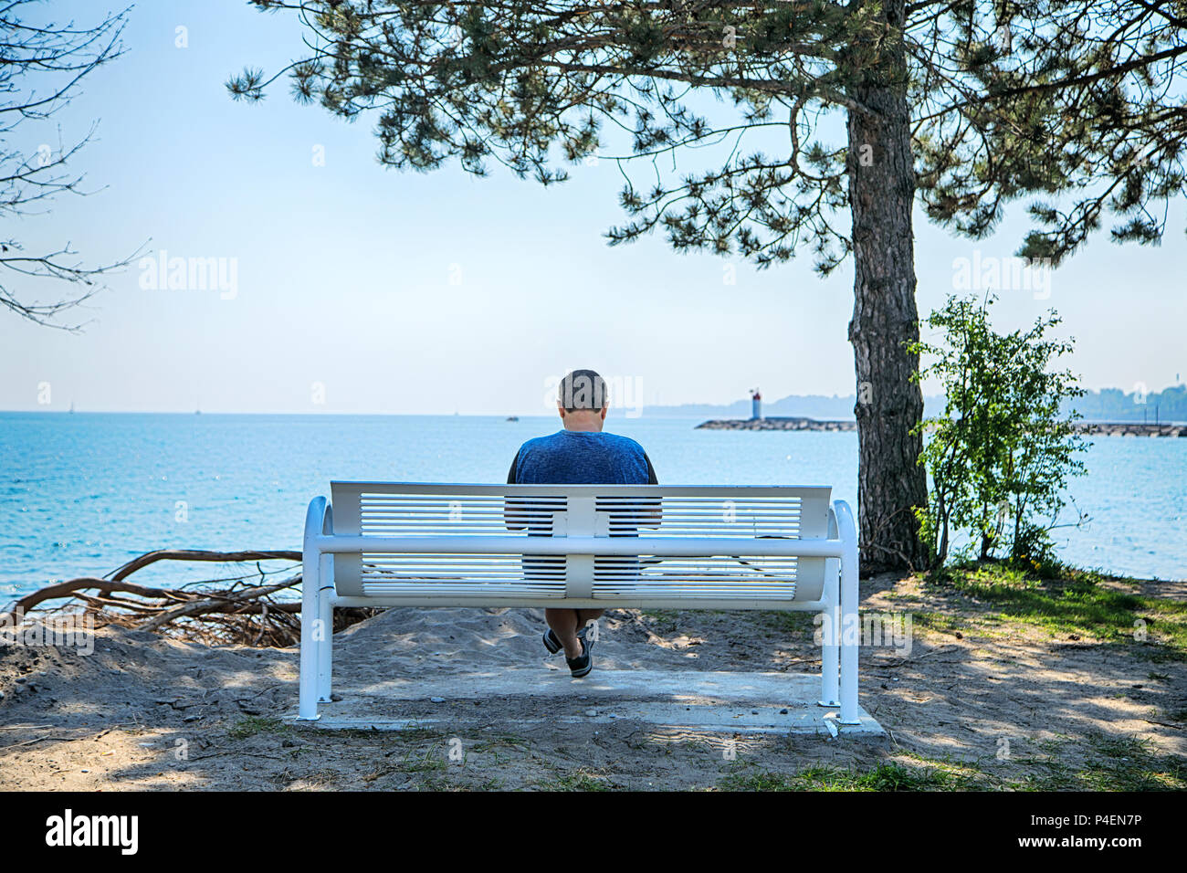 Man Sitting On A Bench By Lake Ontario Toronto Ontario Canada
